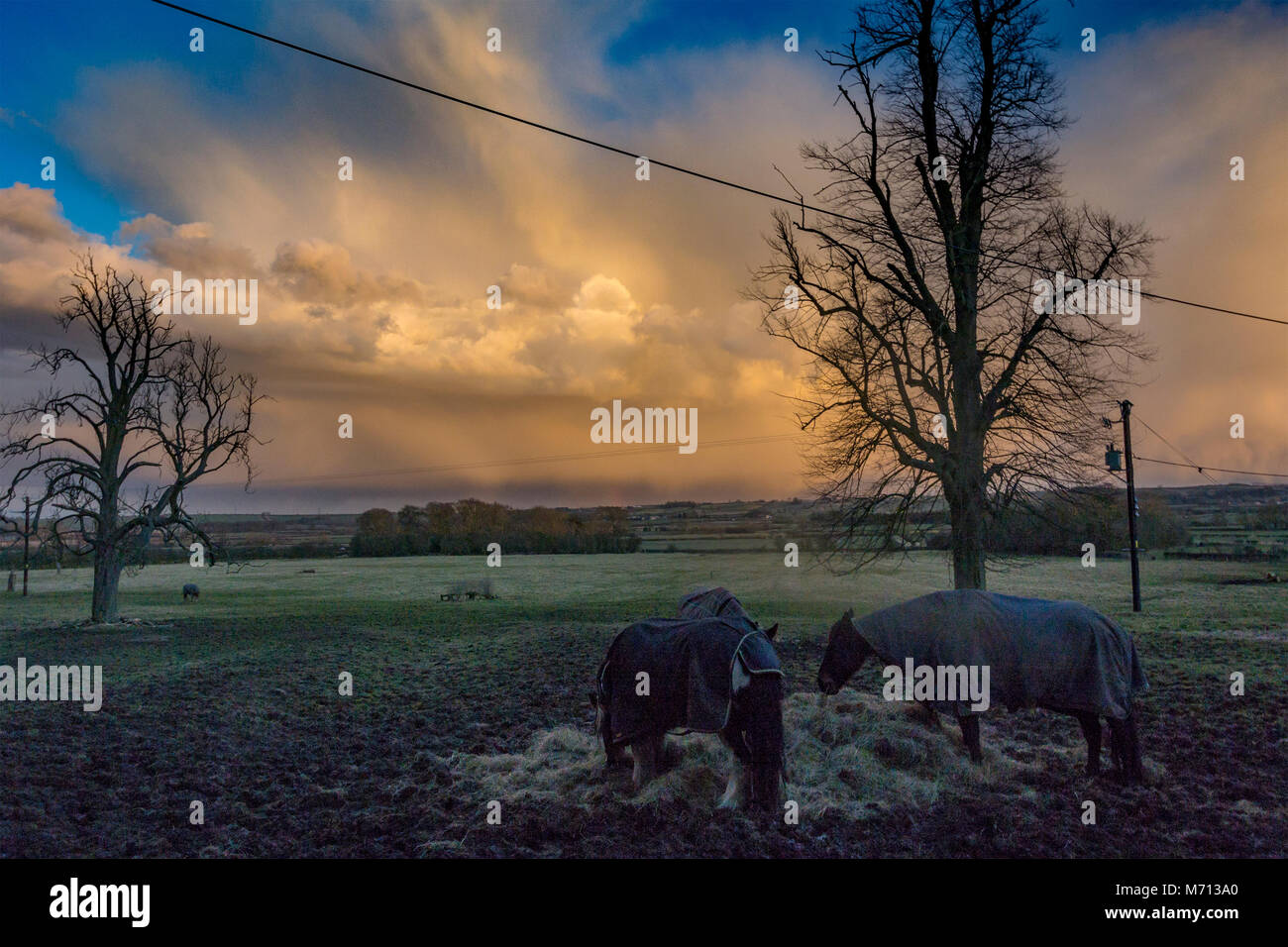 Melton Mowbray 7th March 2018: Drama in the evening sky during a  mild evening with natures deep blues and orange - Stock Image