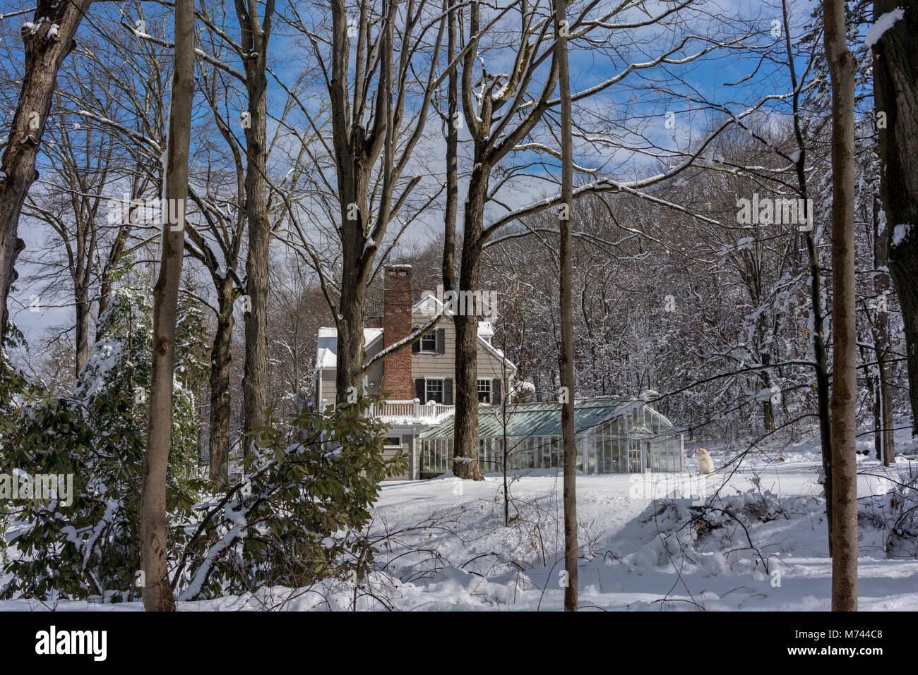 chappaqua-ny-usa-8th-march-2018-snow-doe