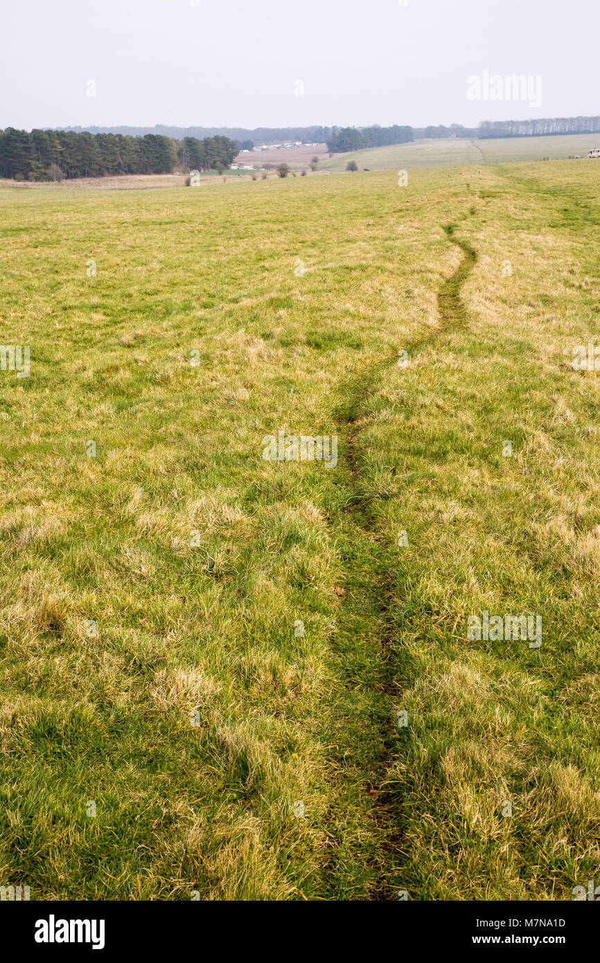 Field view of faint embankment lines 5,500 years old Stonehenge Cursus, Wiltshire, England, UK - Stock Image