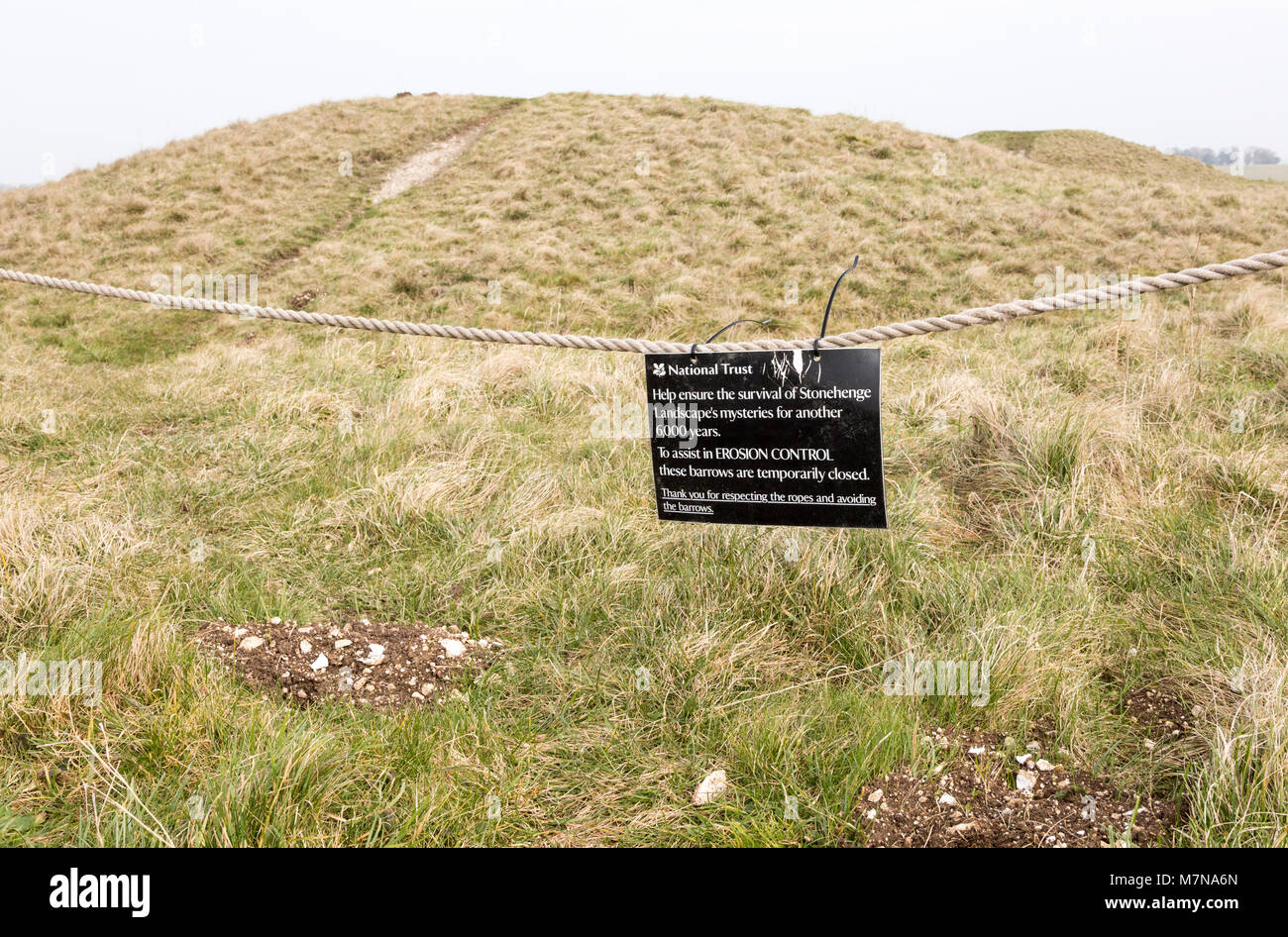 Bronze Age burial mounds Cursus Barrows, closed to the public for erosion control, Stonehenge, Wiltshire, England, - Stock Image