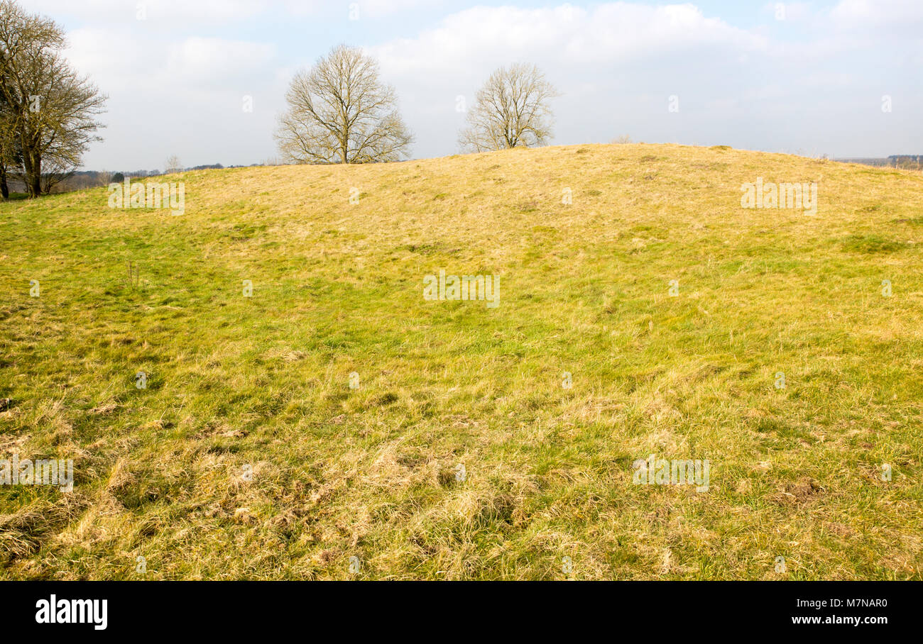 White Barrow neolithic long barrow burial mound tumulus, near Tilshead, Salisbury Plain, Wiltshire, England, UK - Stock Image