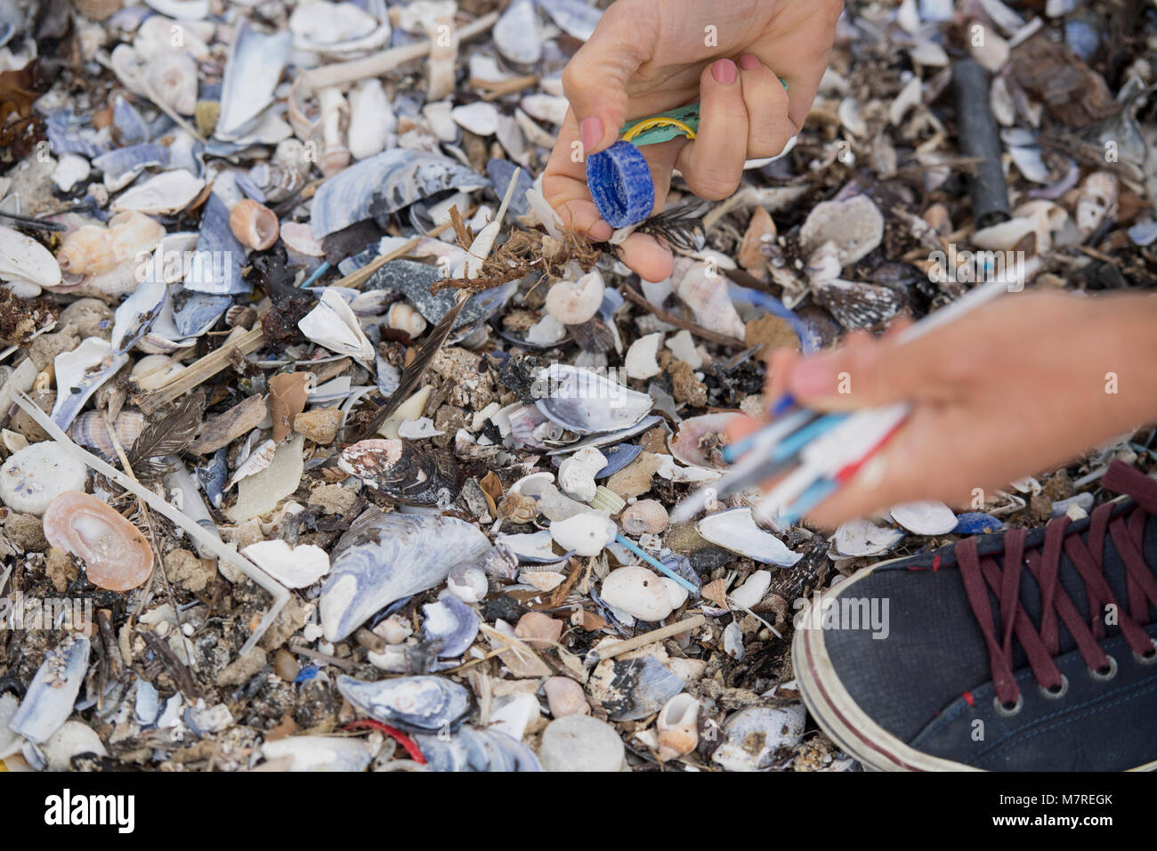 Plastic being collected as part of a beach clean-up in Cape Town, South Africa - Stock Image
