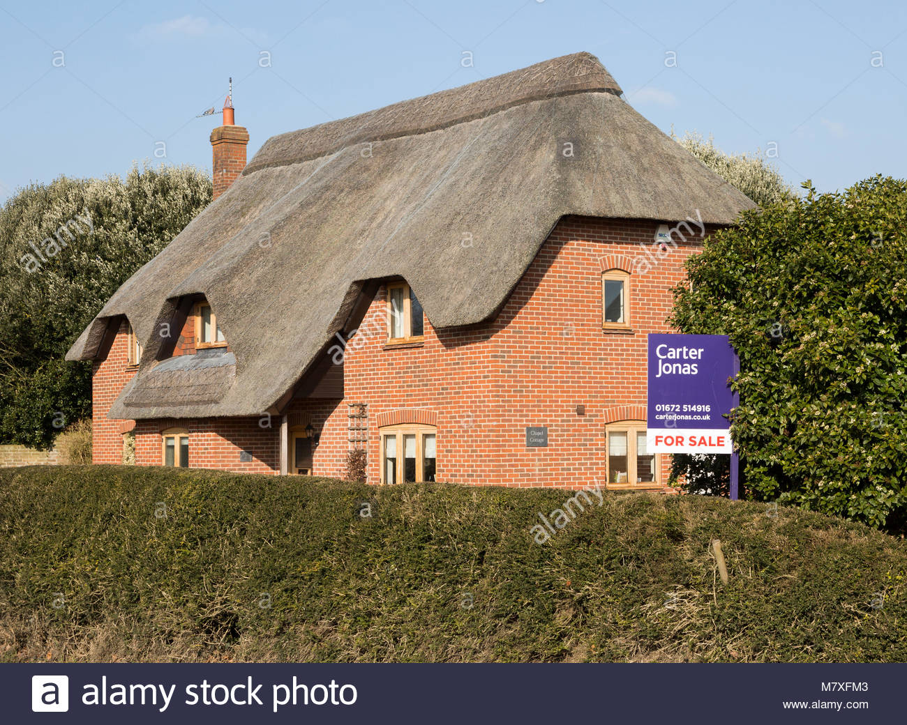 Thatched country cottage for sale with Carter Jonas estate agent sign outside,  Alton Priors, Wiltshire, England, - Stock Image