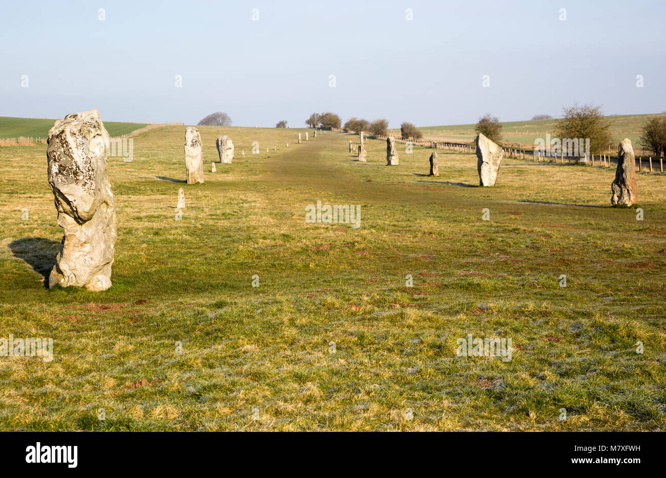 Lines of standing sarsen stones form the Avenue, Avebury World Heritage site, Wiltshire, England, UK - Stock Image