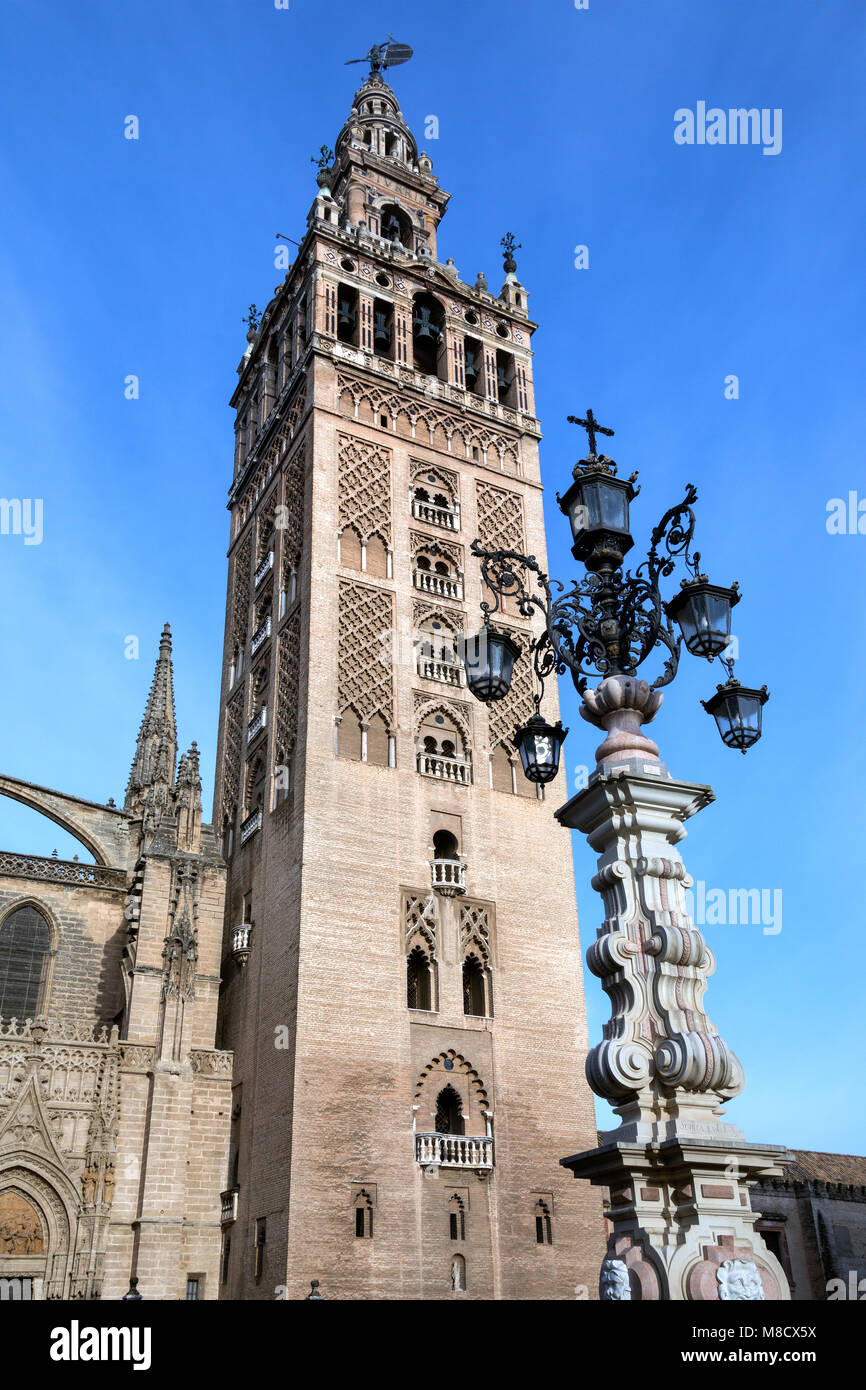 St. Mary of the See Cathedral and the Giralda in the city of Seville in the Andalusia region of Spain. - Stock Image