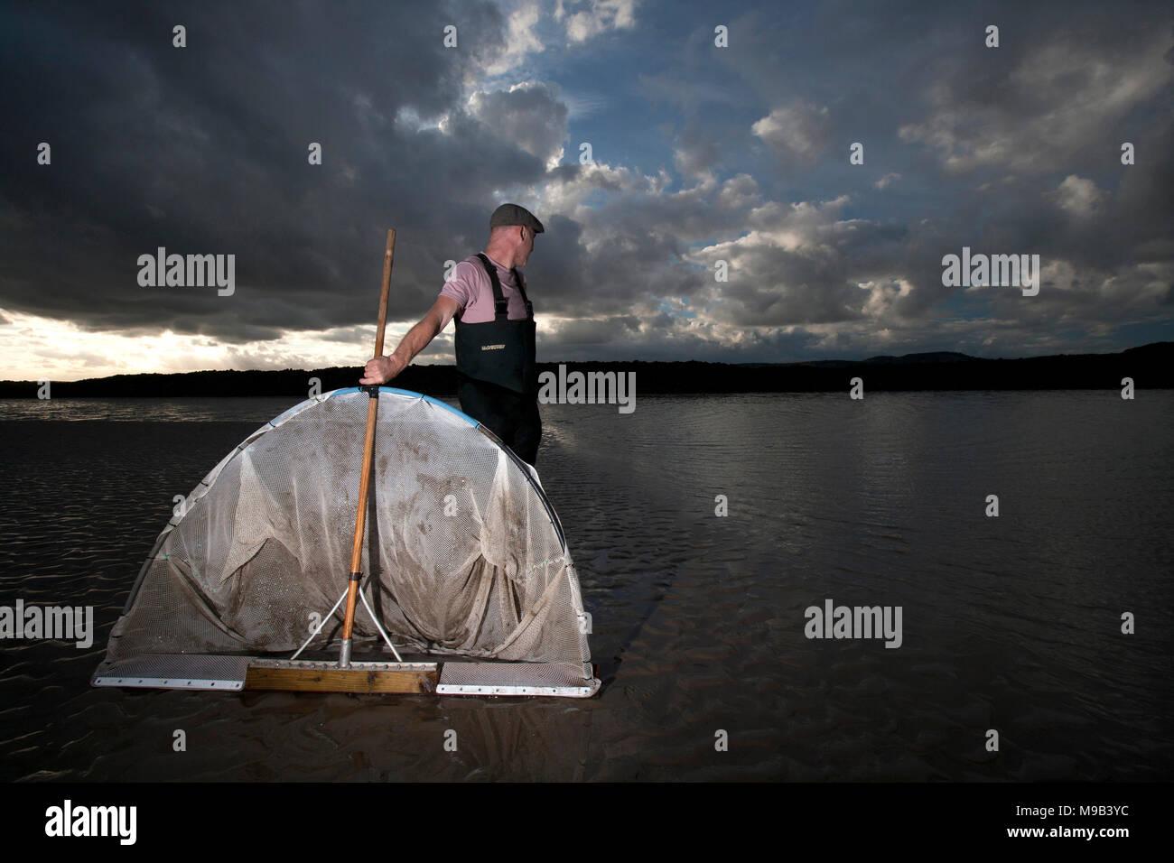 25+ Recreational Shrimp Nets Pics - FreePix