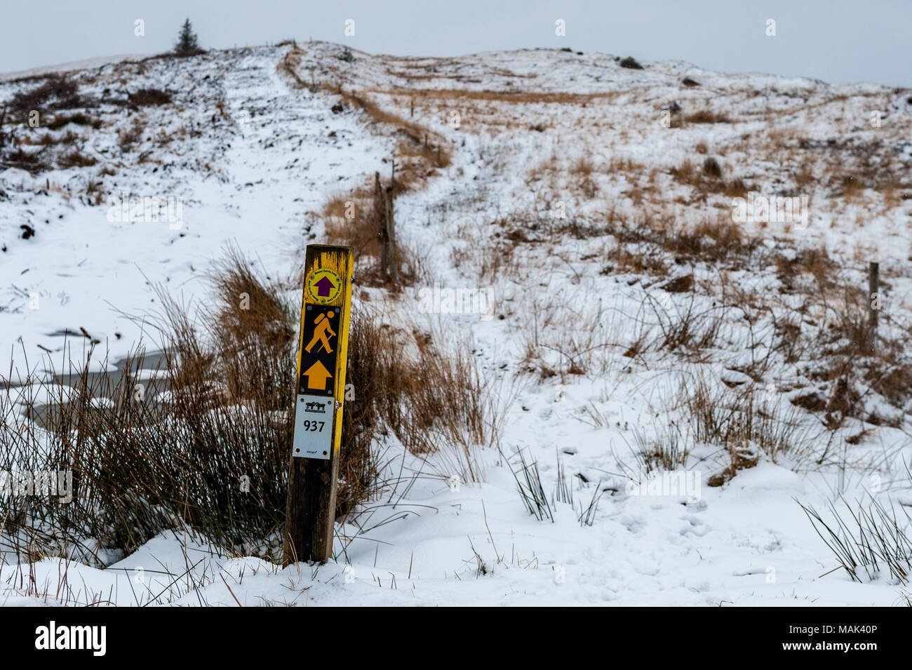 mount-corrin-signpost-in-the-snow-during
