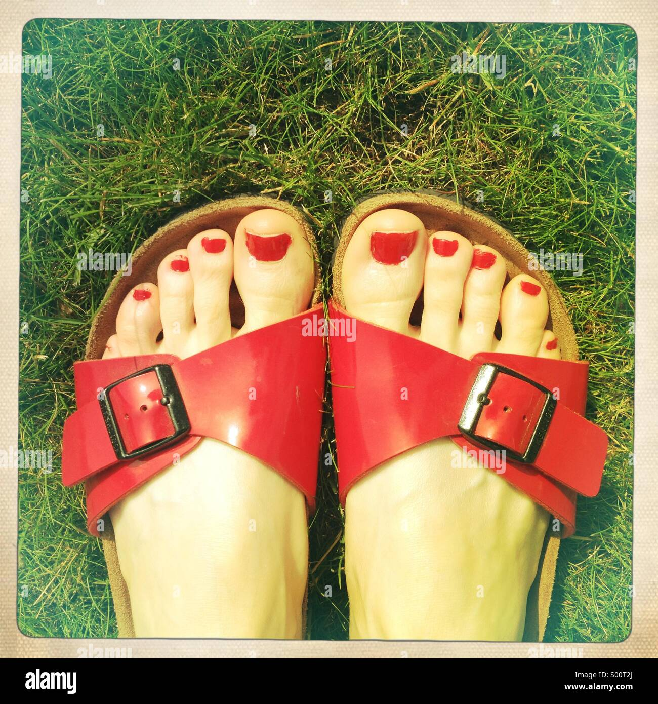 Painted toes in sandals on grass Stock Foto