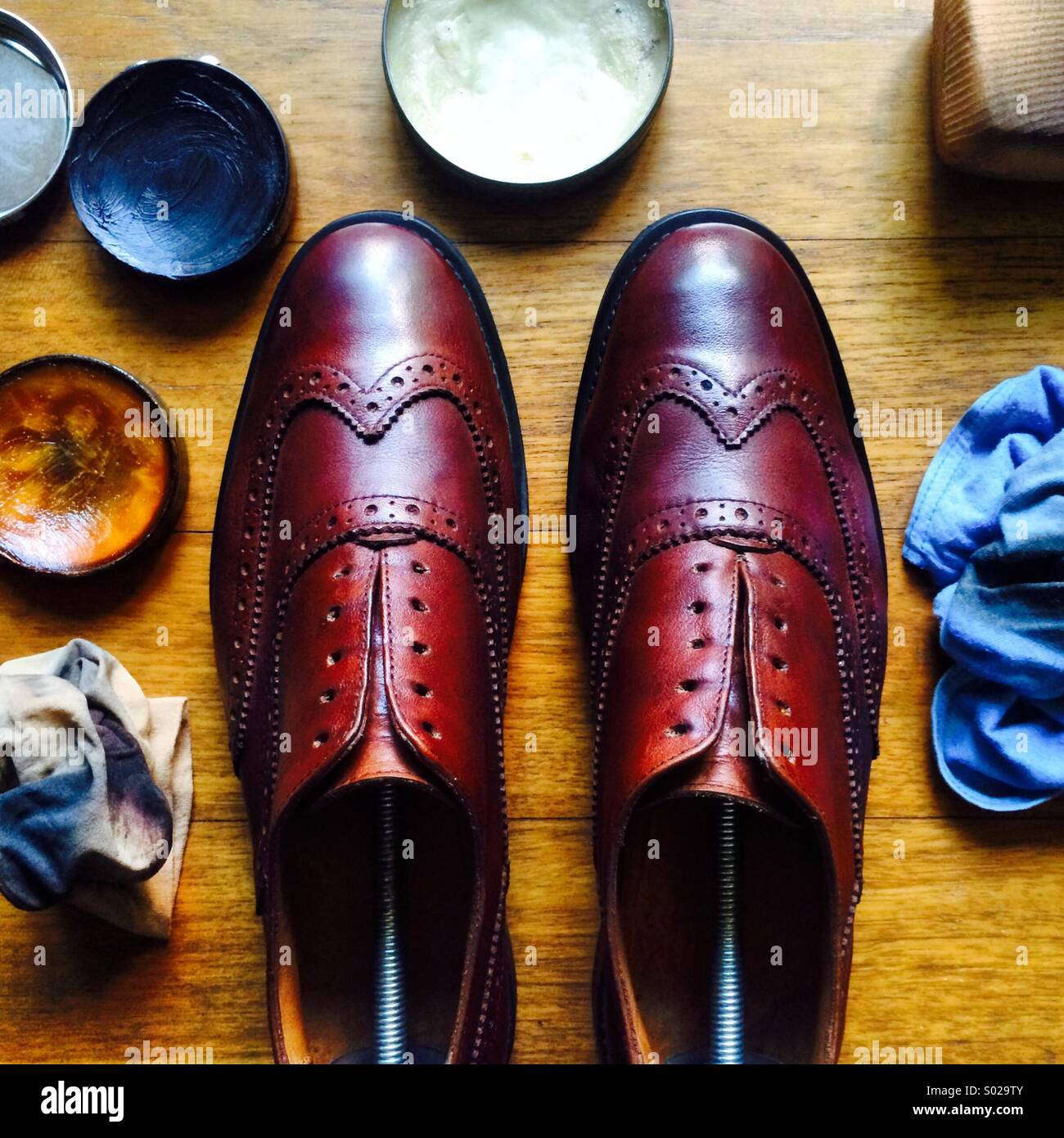 A pair of brown wingtip brogues lined up after a polish and cleaning work, surrounded by polishing tools Stock Foto