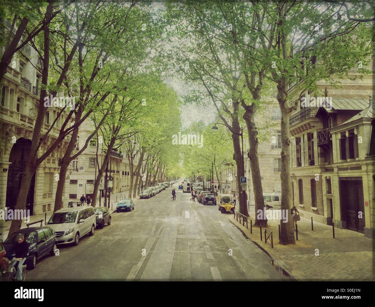 Typical Parisian neighborhood with tree-lined streets, old buildings with classical architecture, parked cars, people Stock Photo