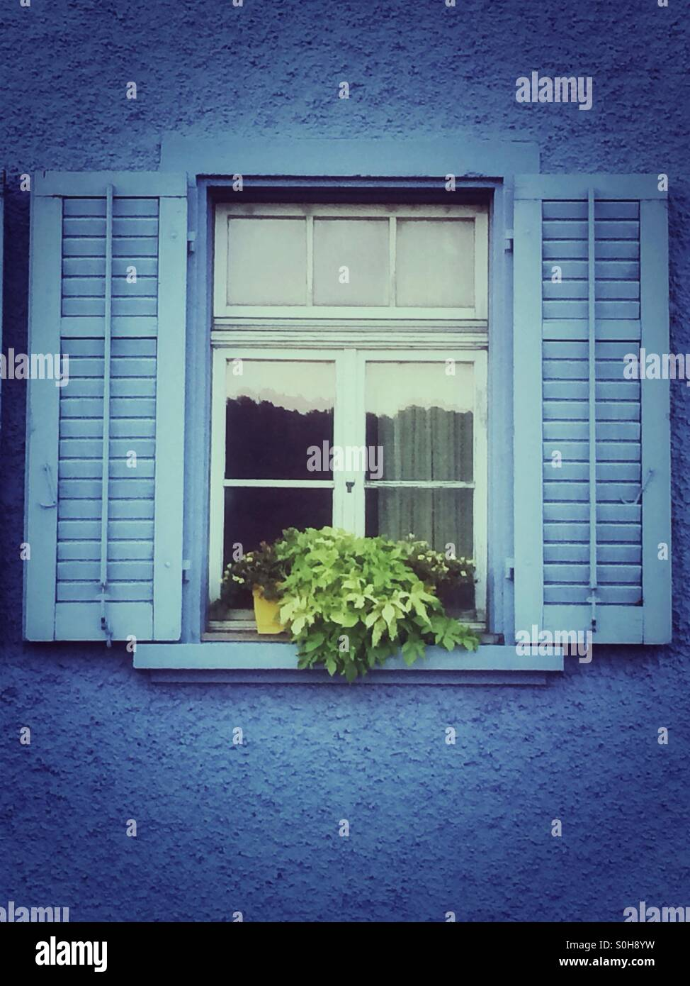 Blue shutters window Stock Photo