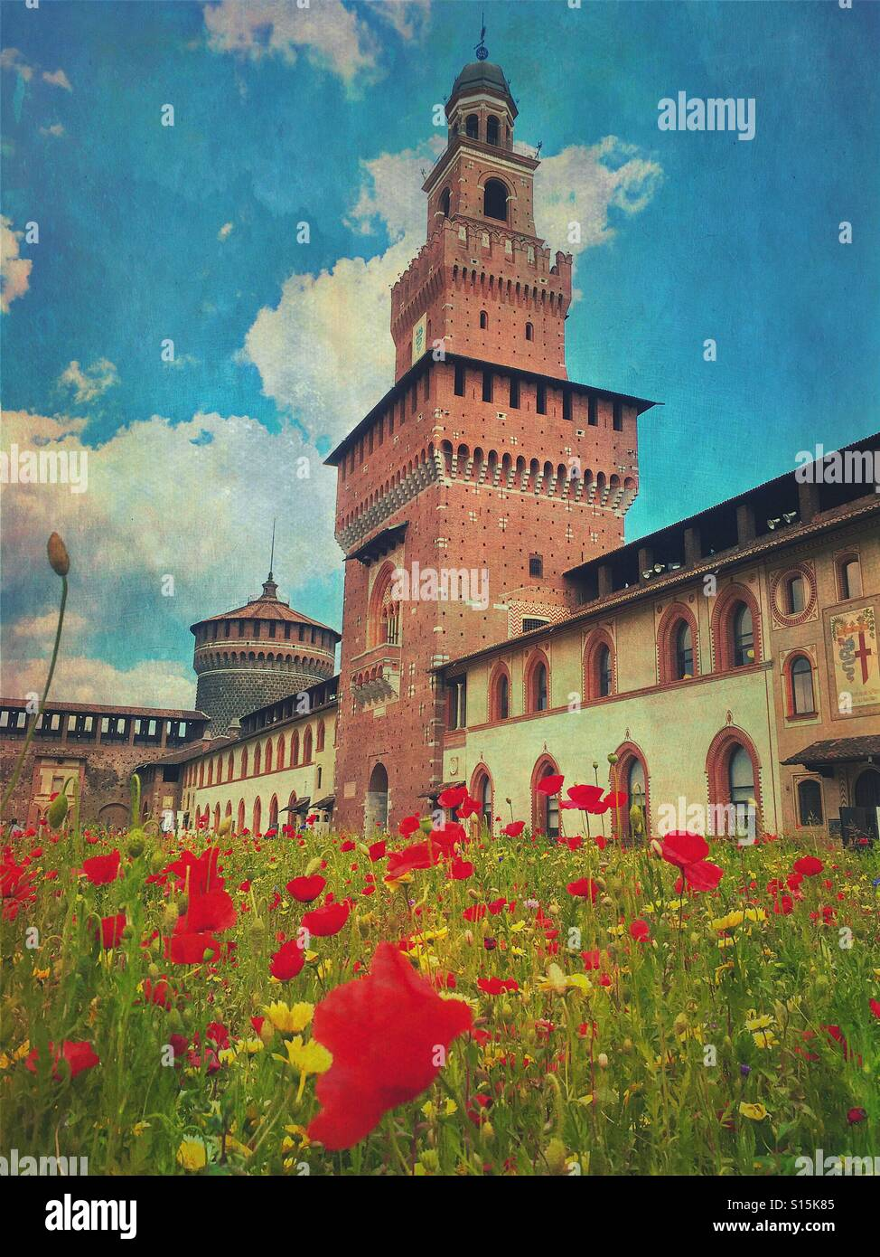 View of the beautiful Sforza Castle in Milan, Italy, with red poppy flower field in the foreground. Vintage paper Stock Photo