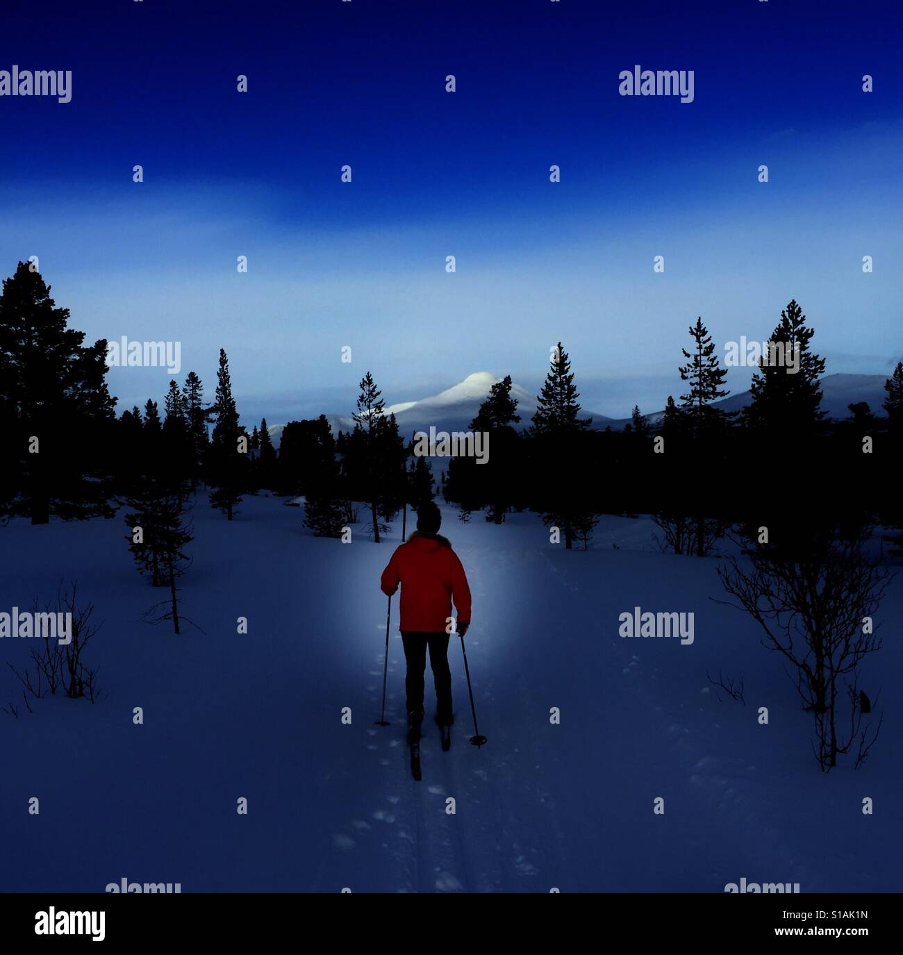 Cross country skiing Stock Foto