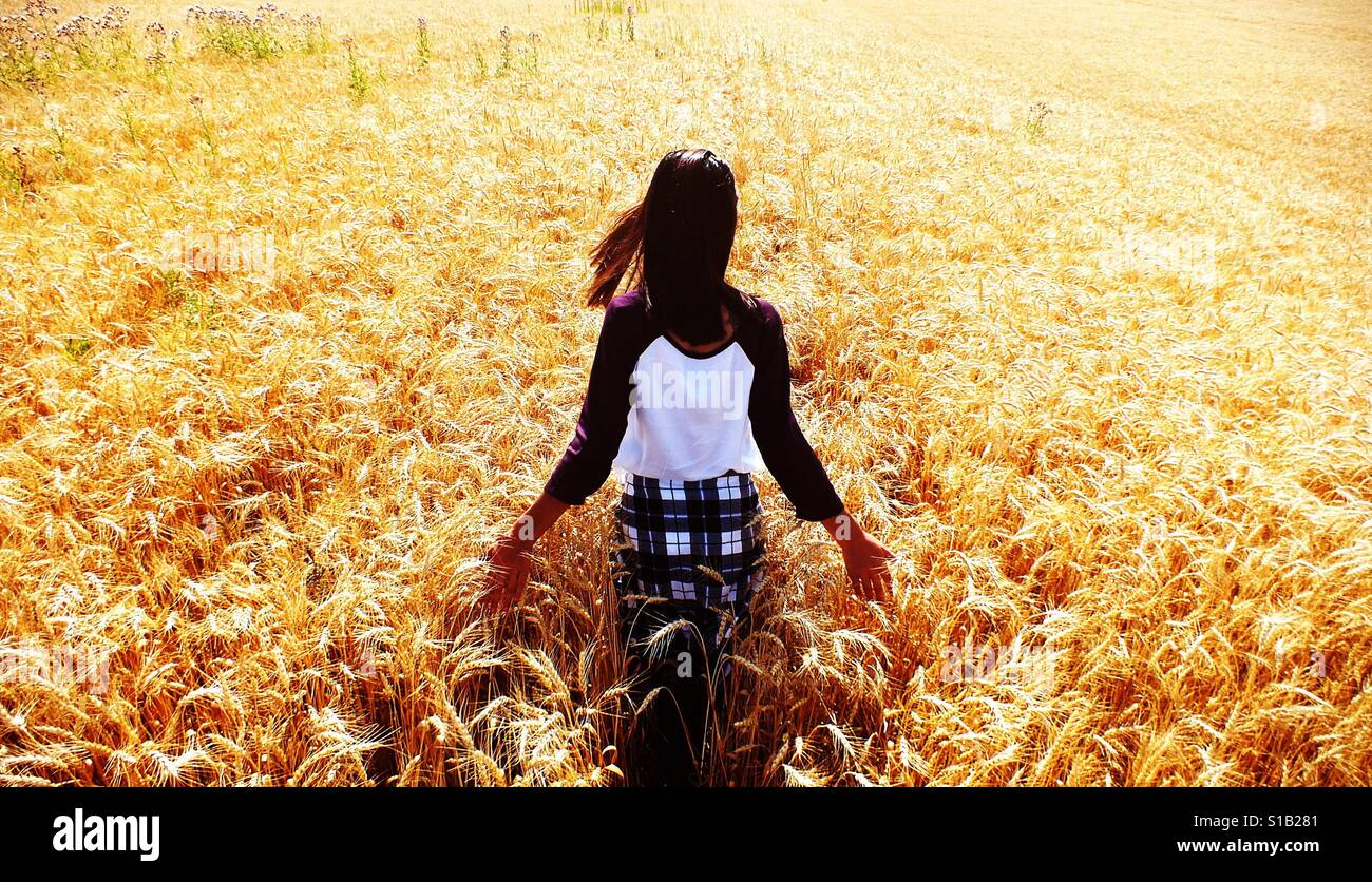 Girl walking in bright sunny wheat field Stock Foto