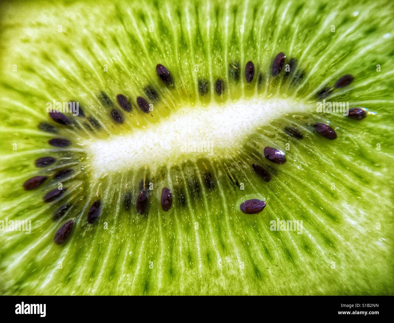 Close up macro photograph of the green centre of a fresh kiwi fruit. Stock Foto