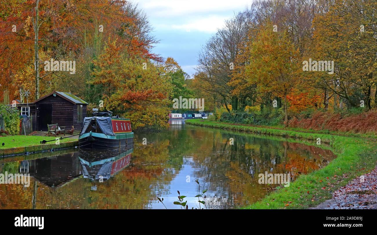 Dieses Stockfoto: Bridgewater Canal, von pickerings Brücke, Thelwall, Herbst, Warrington, Cheshire, North West England, UK, WA4 3JR - 2A9D89