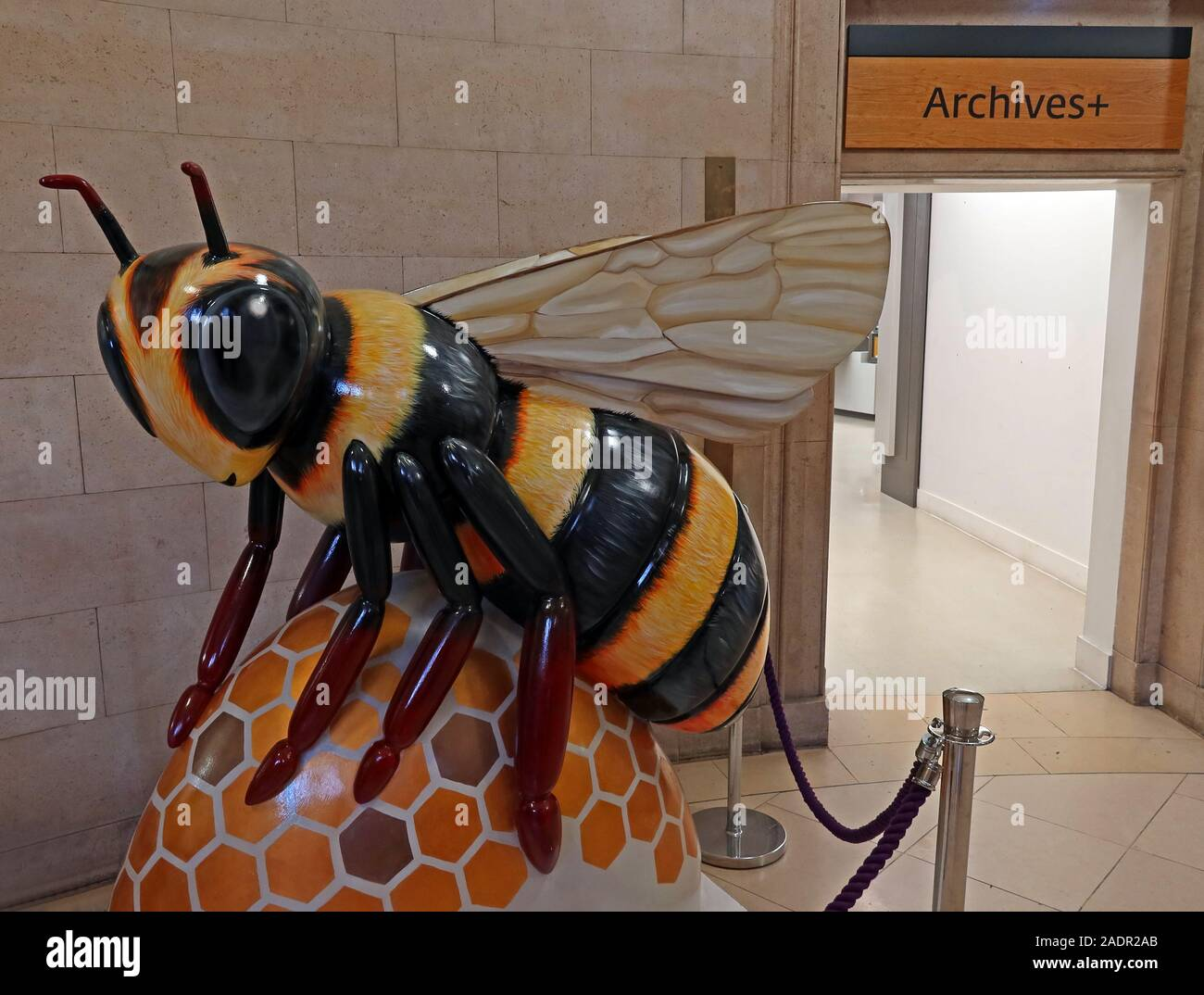 Dieses Stockfoto: Bee in the City, Manchester Bee, Outside Manchester Archives, Central Library, St Peter's Square, Manchester, England, UK, M2 5PD - 2ADR2A