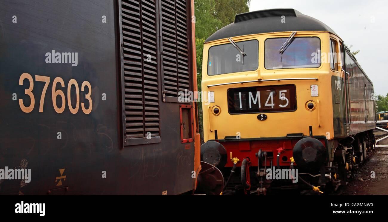 Dieses Stockfoto: Class 48 British Rail Diesel Engine, in grün und gelb Lackierung - 0000 , IM45, Brush Type 4, in Goods Sidings Yard, England, UK - 2AGMNW