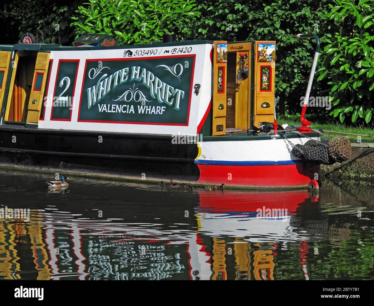 Dieses Stockfoto: 503490 ,B1420 White Harriet Valencia Wharf Narrowboot, Barge auf Kanal, Cheshire, England, Großbritannien, Reflexion - 2BTY7B
