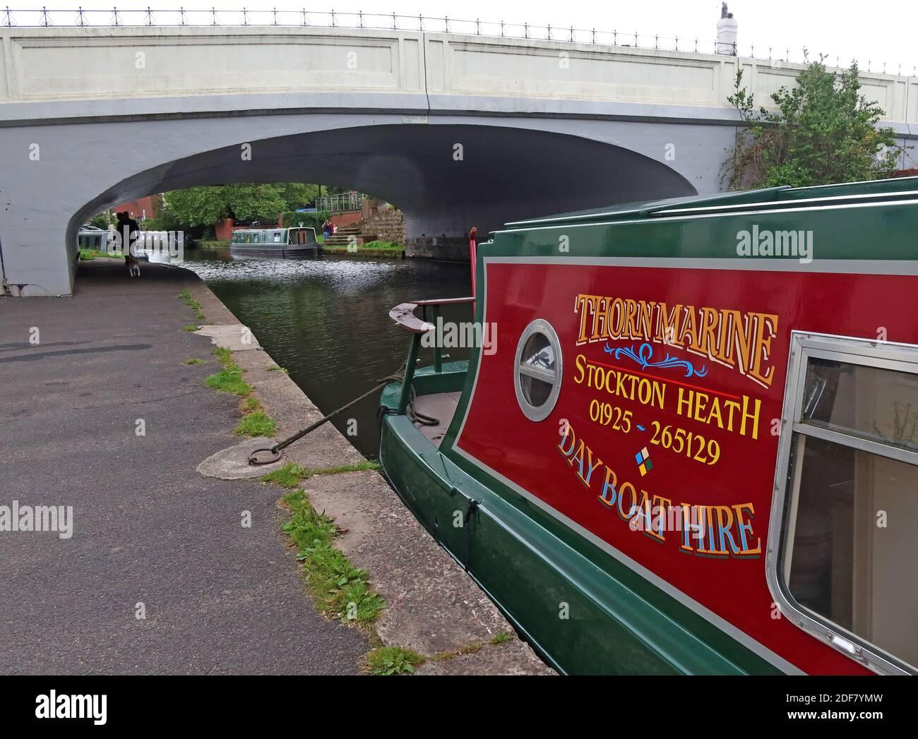 Dieses Stockfoto: Thorn Marine Dayboat Verleih, Stockton Heath, 01925-265129, Day Boat Hire, Warrington, Cheshire, England, Großbritannien, WA4 6LE, Bridgewater Canal - 2DF7YM