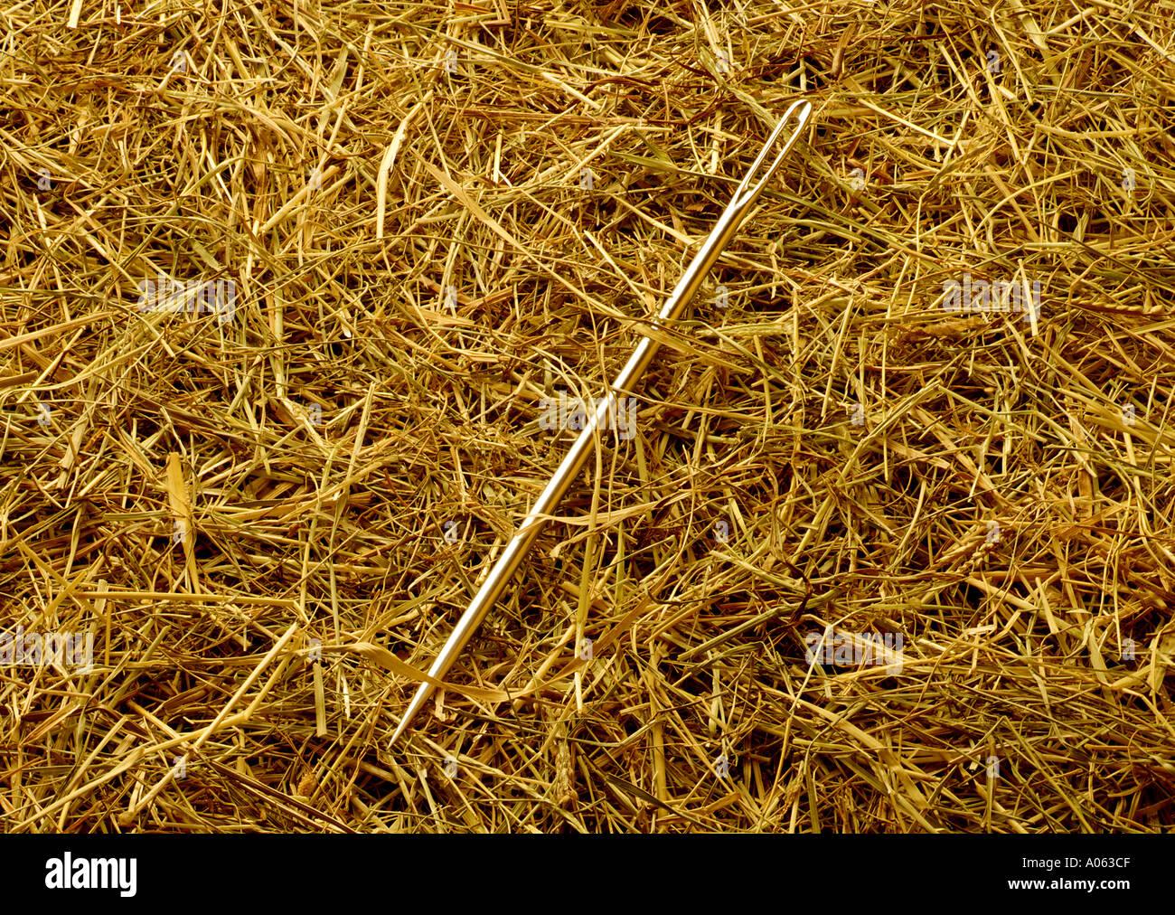 Nadel im Heuhaufen Stockbild