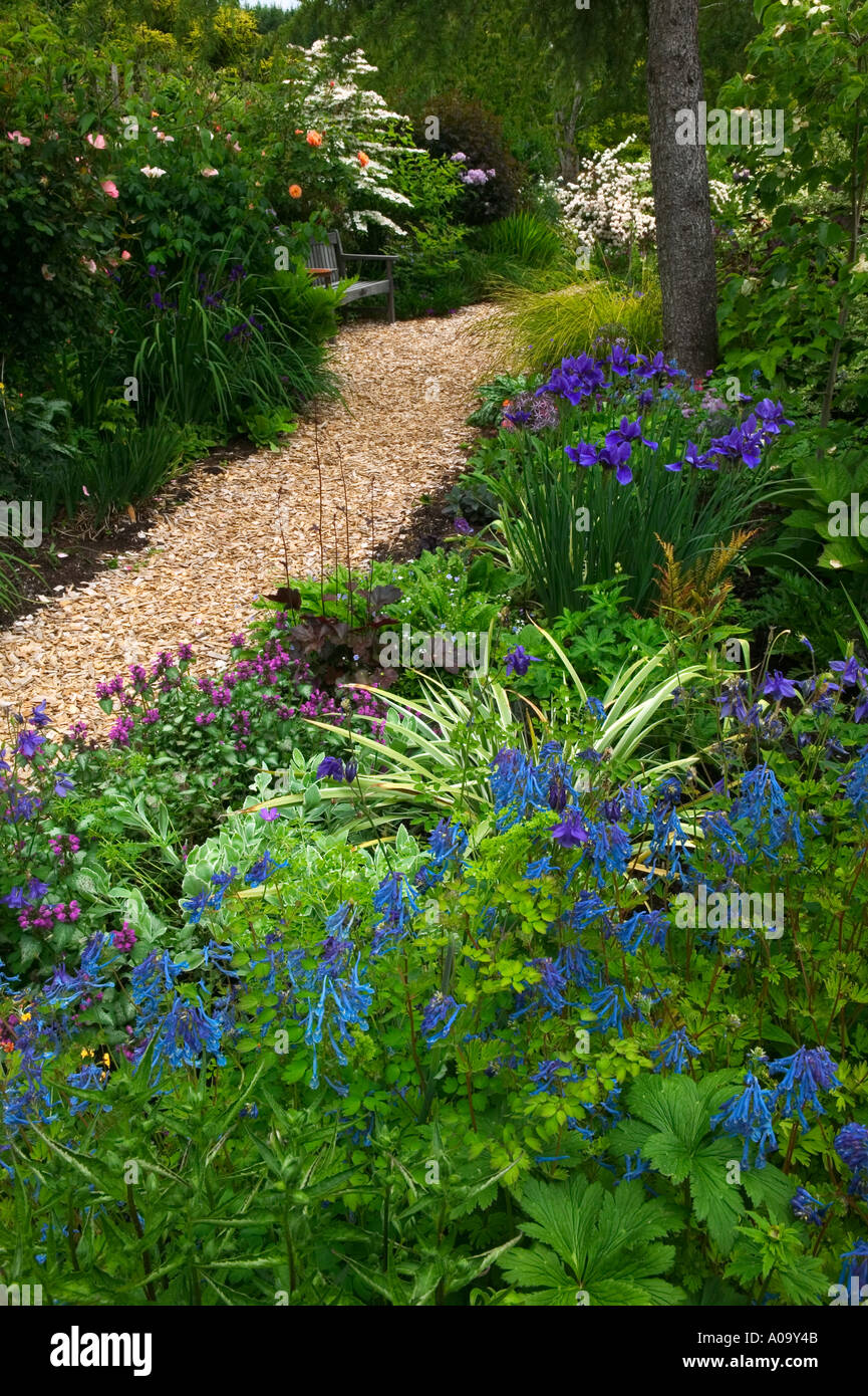 wood chip path stockfotos wood chip path bilder alamy. Black Bedroom Furniture Sets. Home Design Ideas