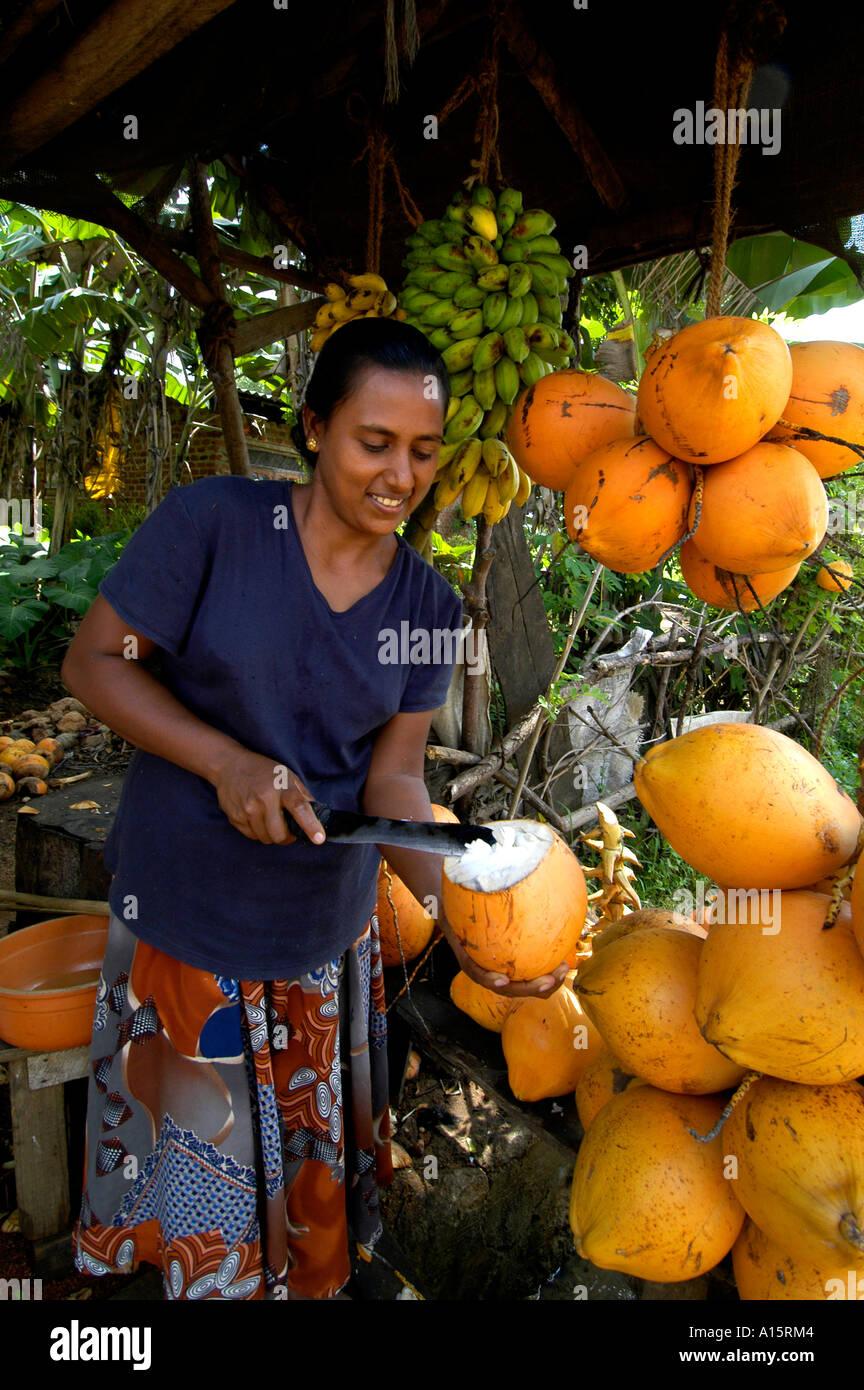 Sri Lanka Markt bar Pub Coco Nuss Essen trinken Milch Stockbild