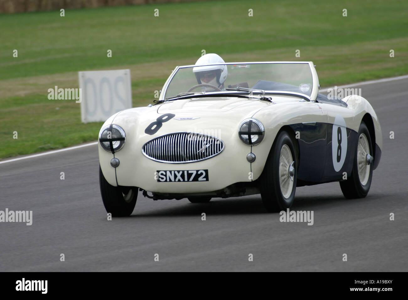 1955 Austin-Healey 100 s am Goodwood Revival, Sussex, England. Stockbild