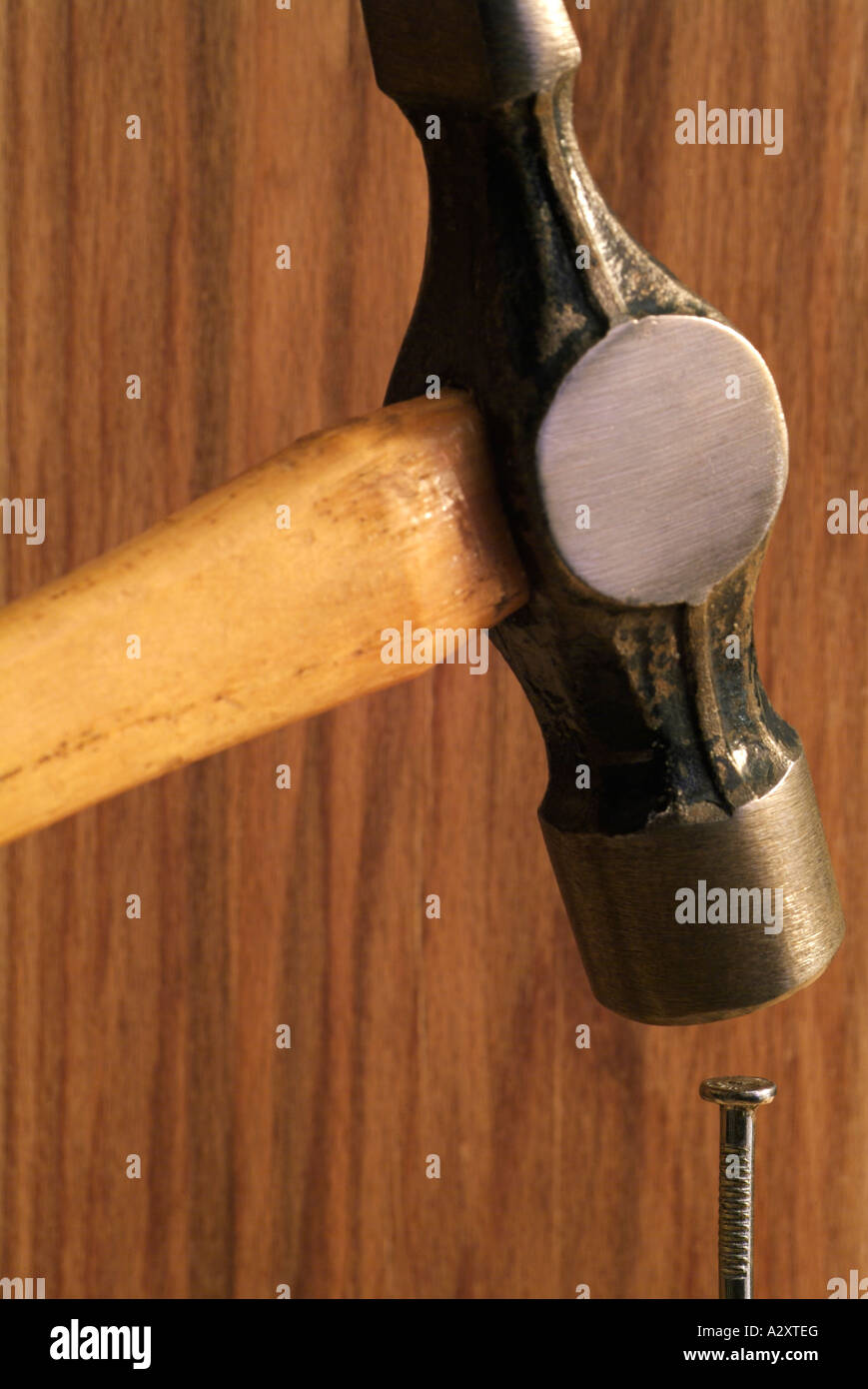 Hammer einen Nagel auf den Kopf getroffen Stockbild