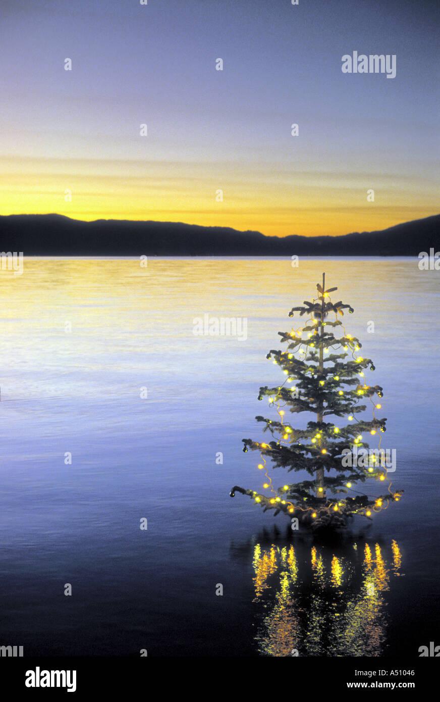 Geschmückter Weihnachtsbaum in ruhigem Wasser mit Lichtern Lake Tahoe, Kalifornien USA Stockbild