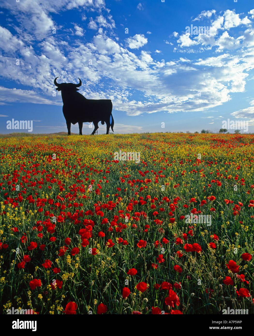 Riesigen Stier, Toros De Osborne, Andalusien, Spanien Stockbild