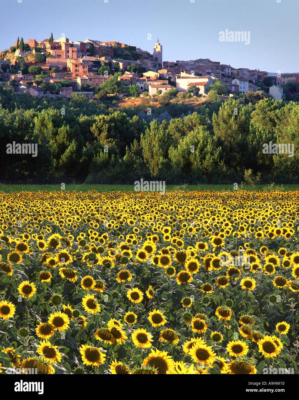 FR - PROVENCE: Roussillon Stockbild
