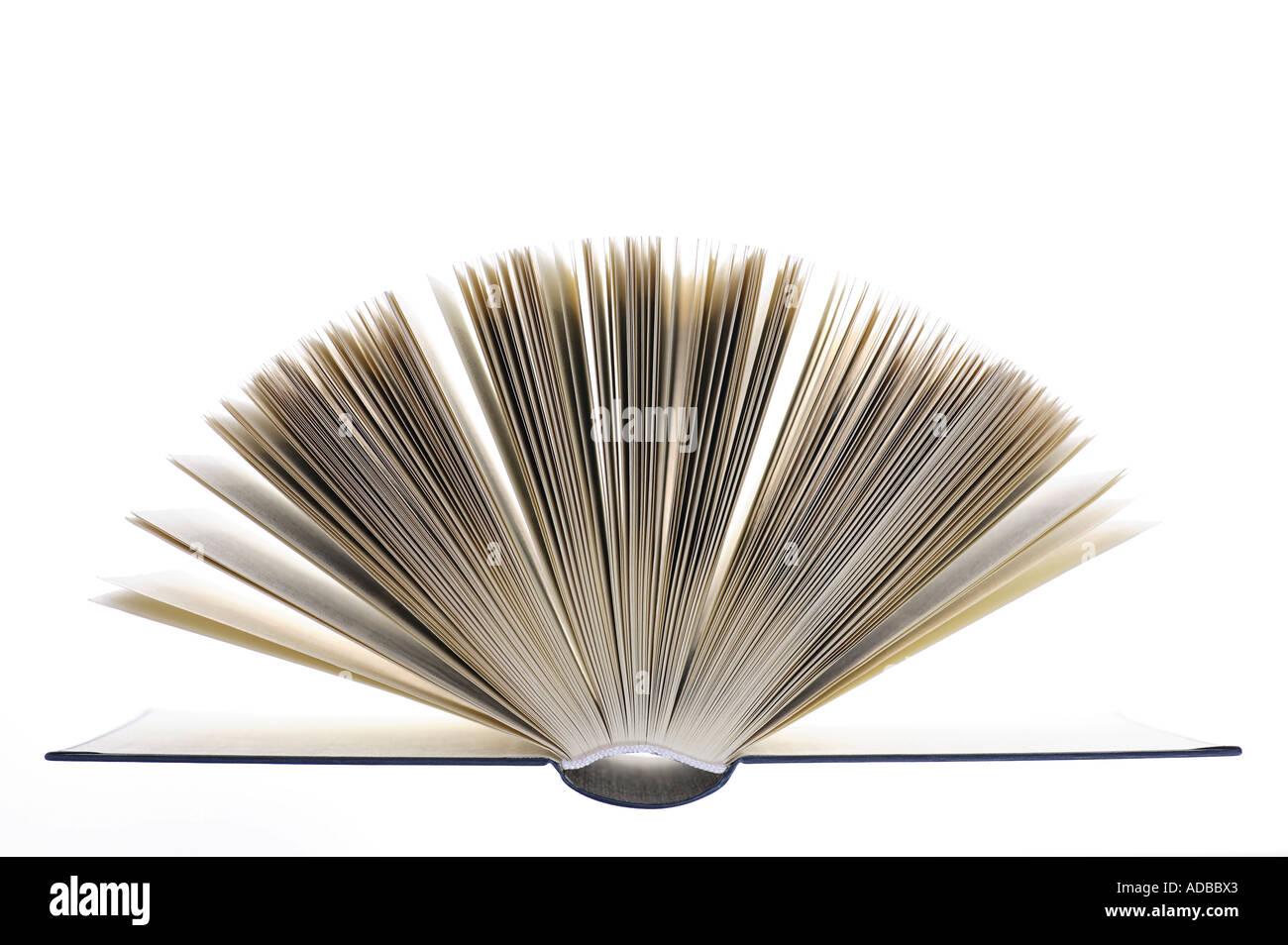 Seiten eines aufgeschlagenen Buches. Stockbild