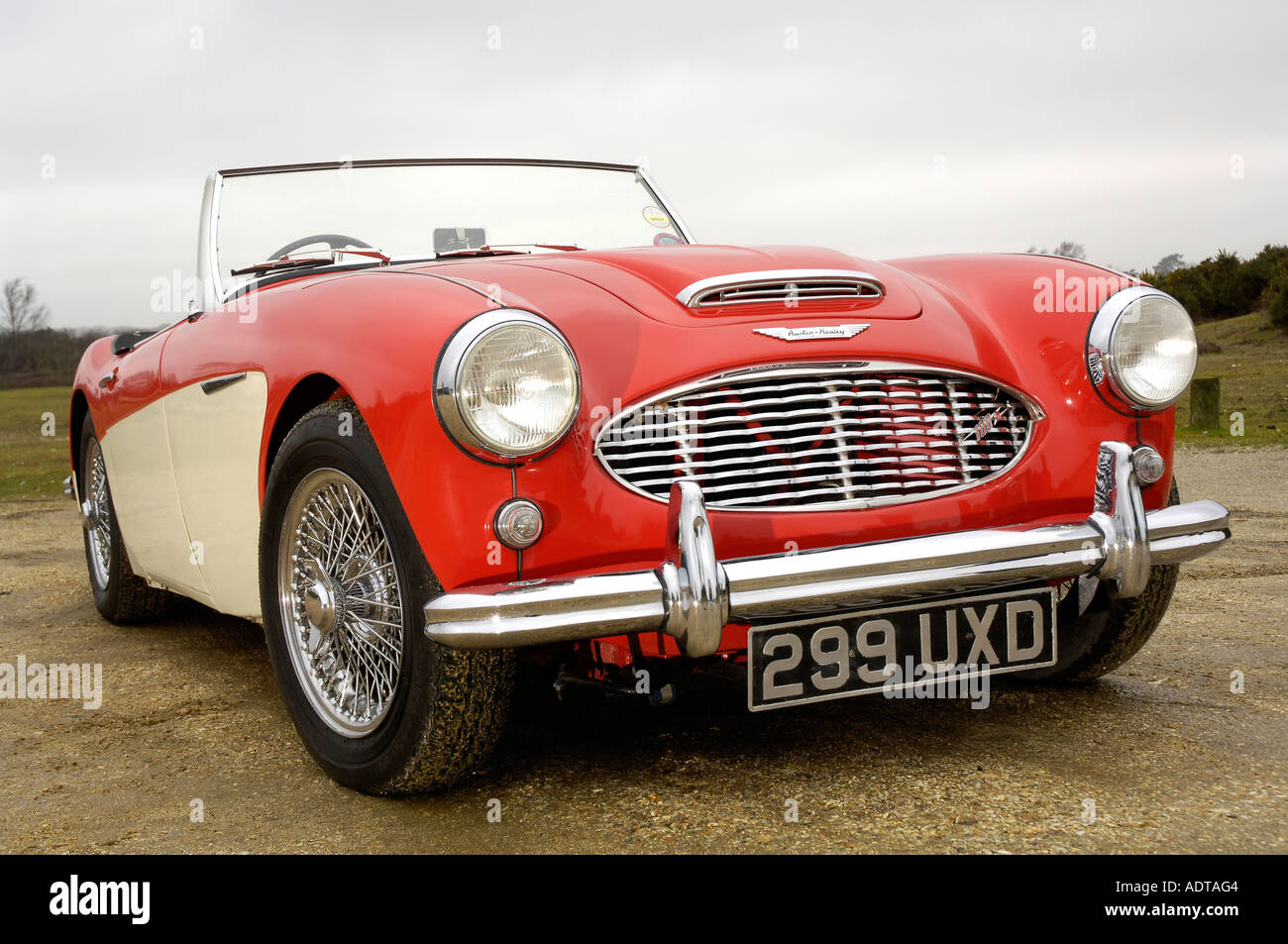 Austin-Healey Stockbild