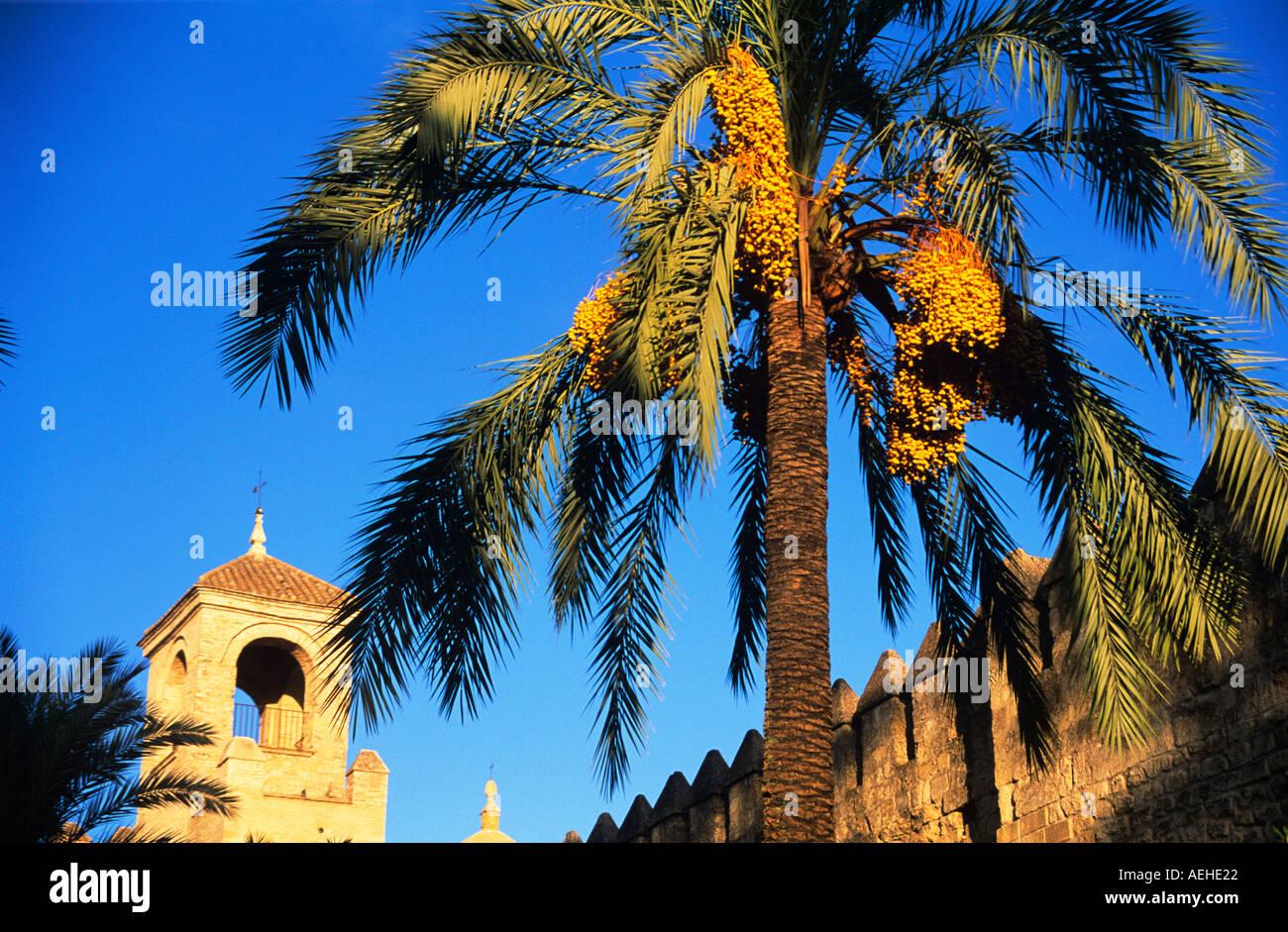 Alcazar de Los Reyes Cristianos, Córdoba, Andalusien, Spanien. Stockbild