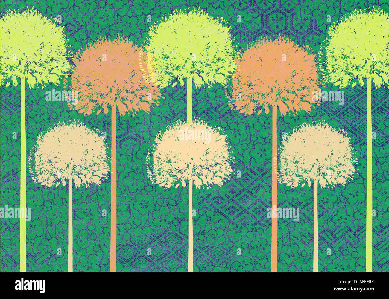 Treten Sie ein und wiederholen Sie die Abbildung der Alliums Stockfoto