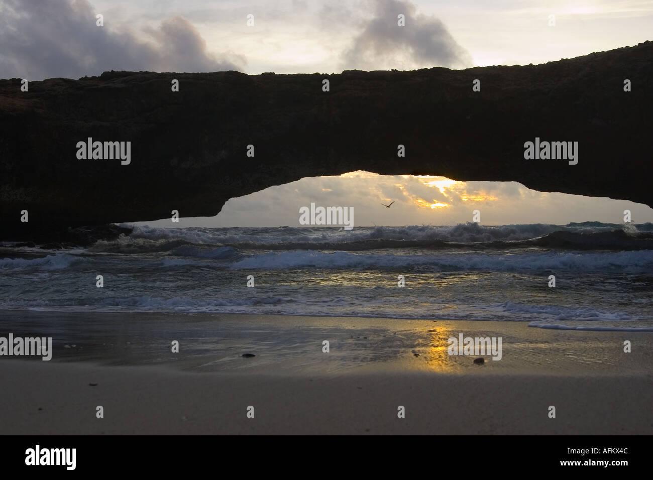 Aruba natürliche Brücke bei Sonnenaufgang mit Pelikan silhouette Stockbild