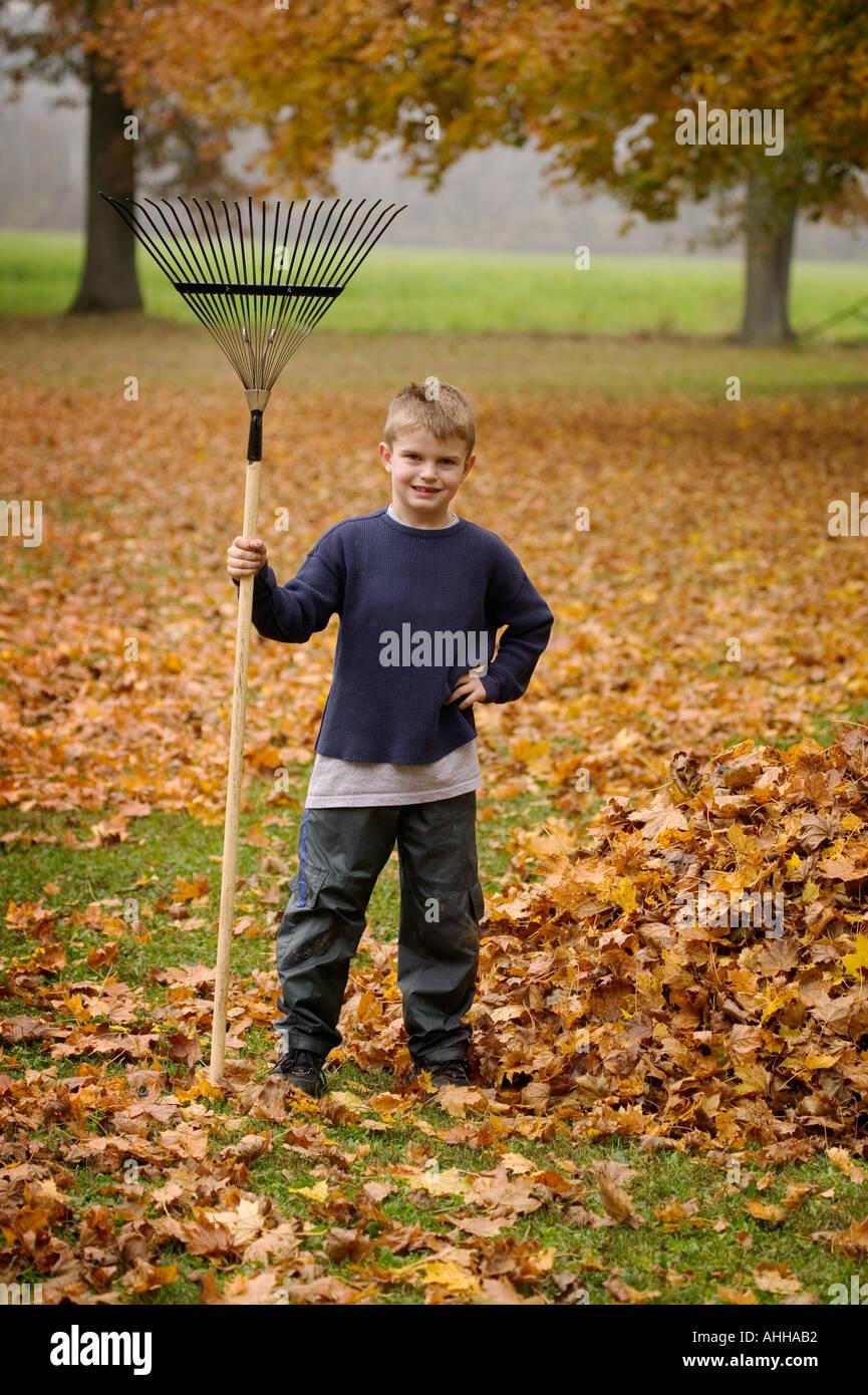 Junge 8 Posen durch einen Haufen von Blättern mit einer Harke Stockbild