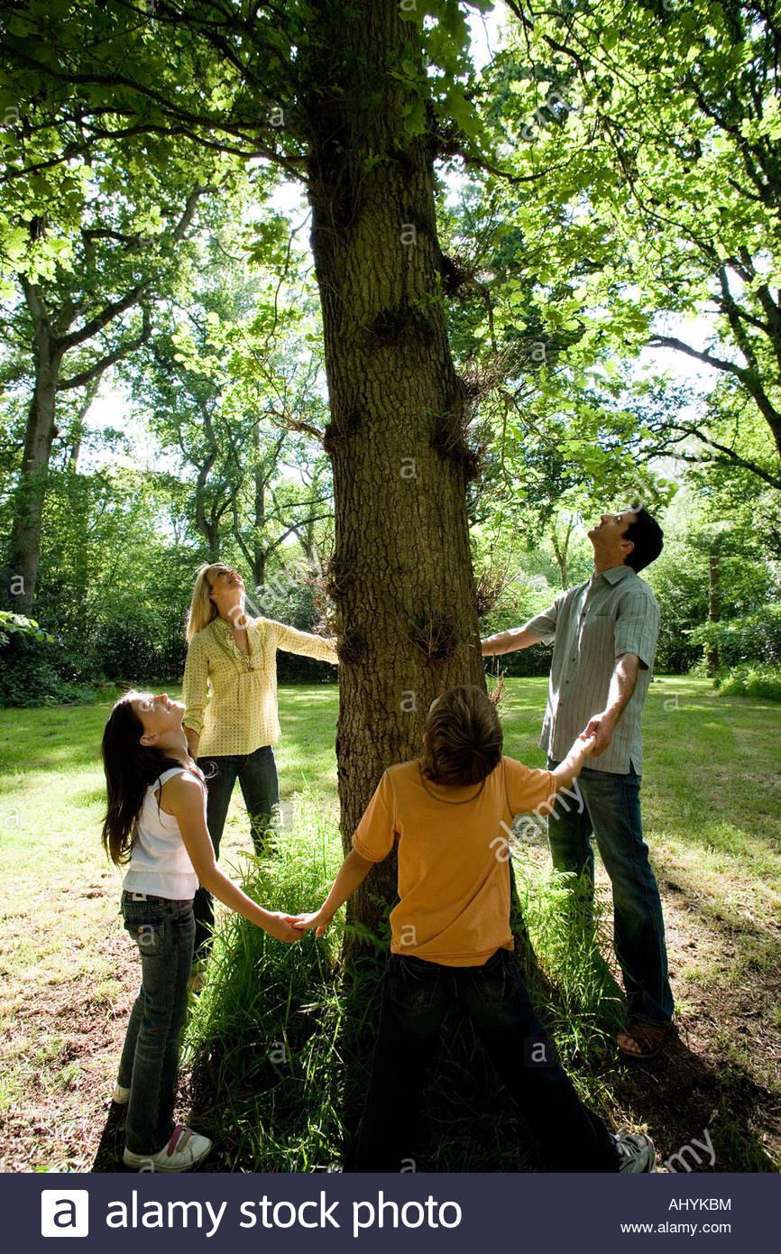 30er Jahre Hände Familienholding auf Basis von drei im grünen nachschlagen in Zweige, Stockbild