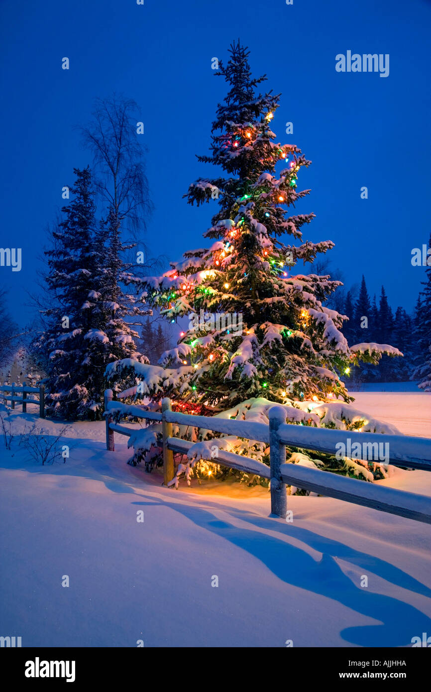 geschm ckter weihnachtsbaum entlang schnee bedeckt zaun. Black Bedroom Furniture Sets. Home Design Ideas