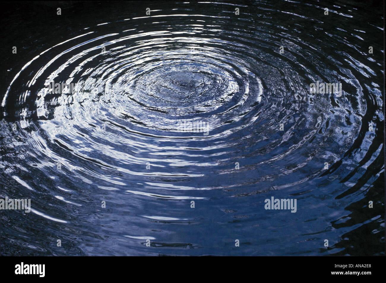 kreisförmige Wellen in einem Teich Stockbild