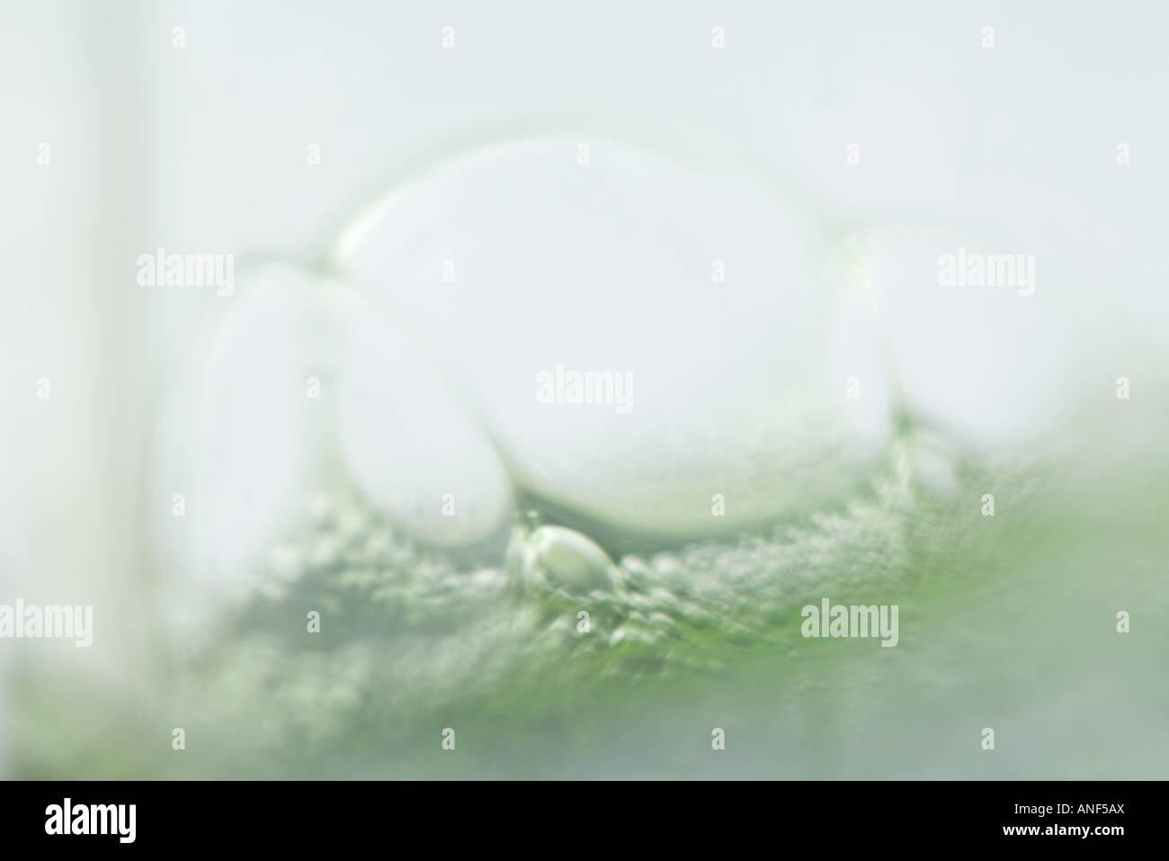 Luftblasen im grünen Stoff, extreme Nahaufnahme Stockbild