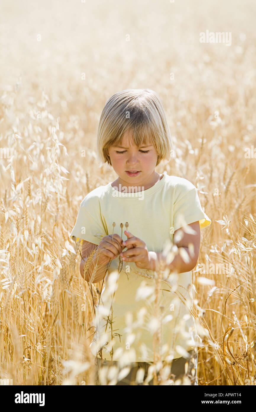 Junge in einem Feld von Weizen Stockbild