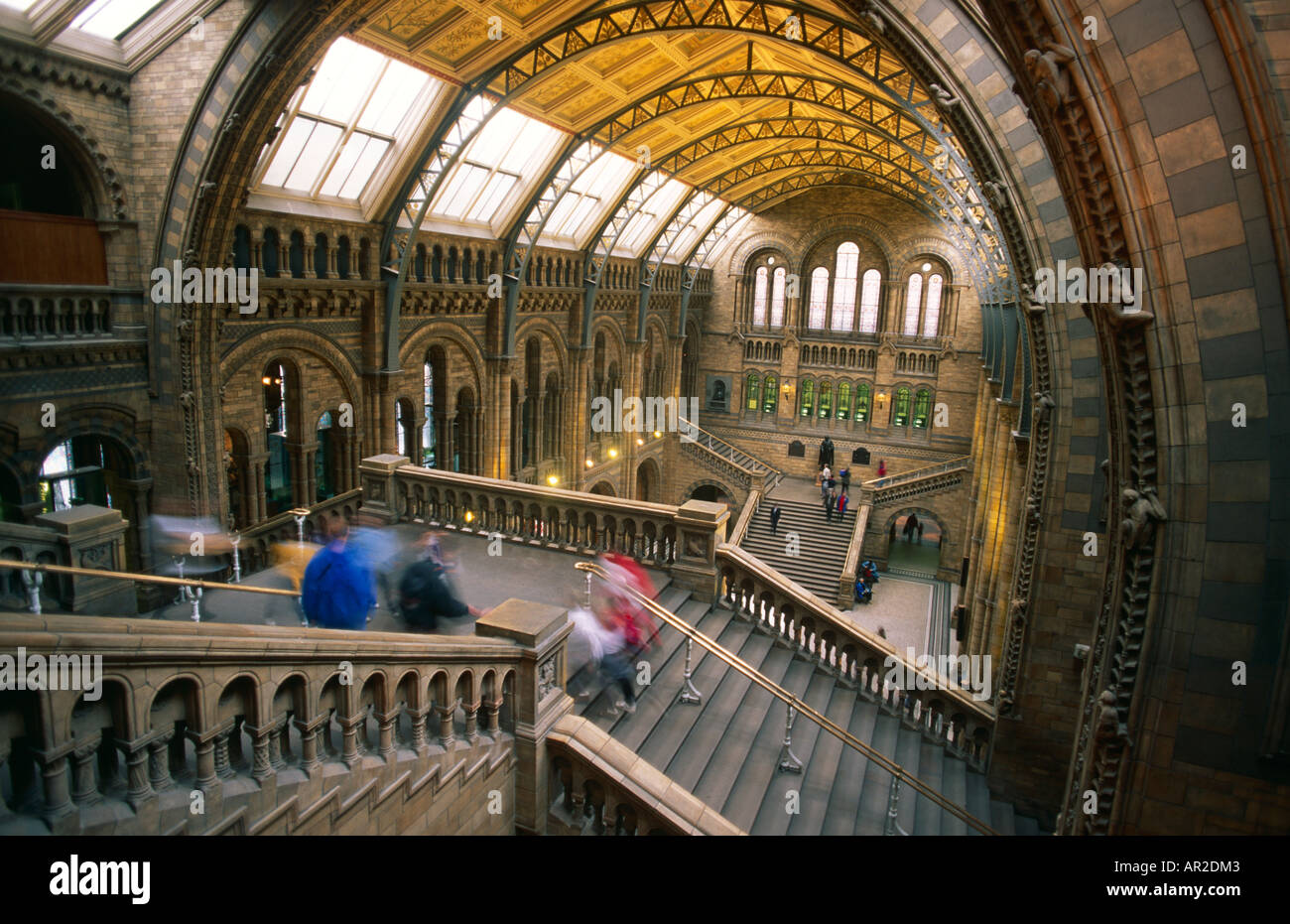 Natural History Museum, London Stockbild