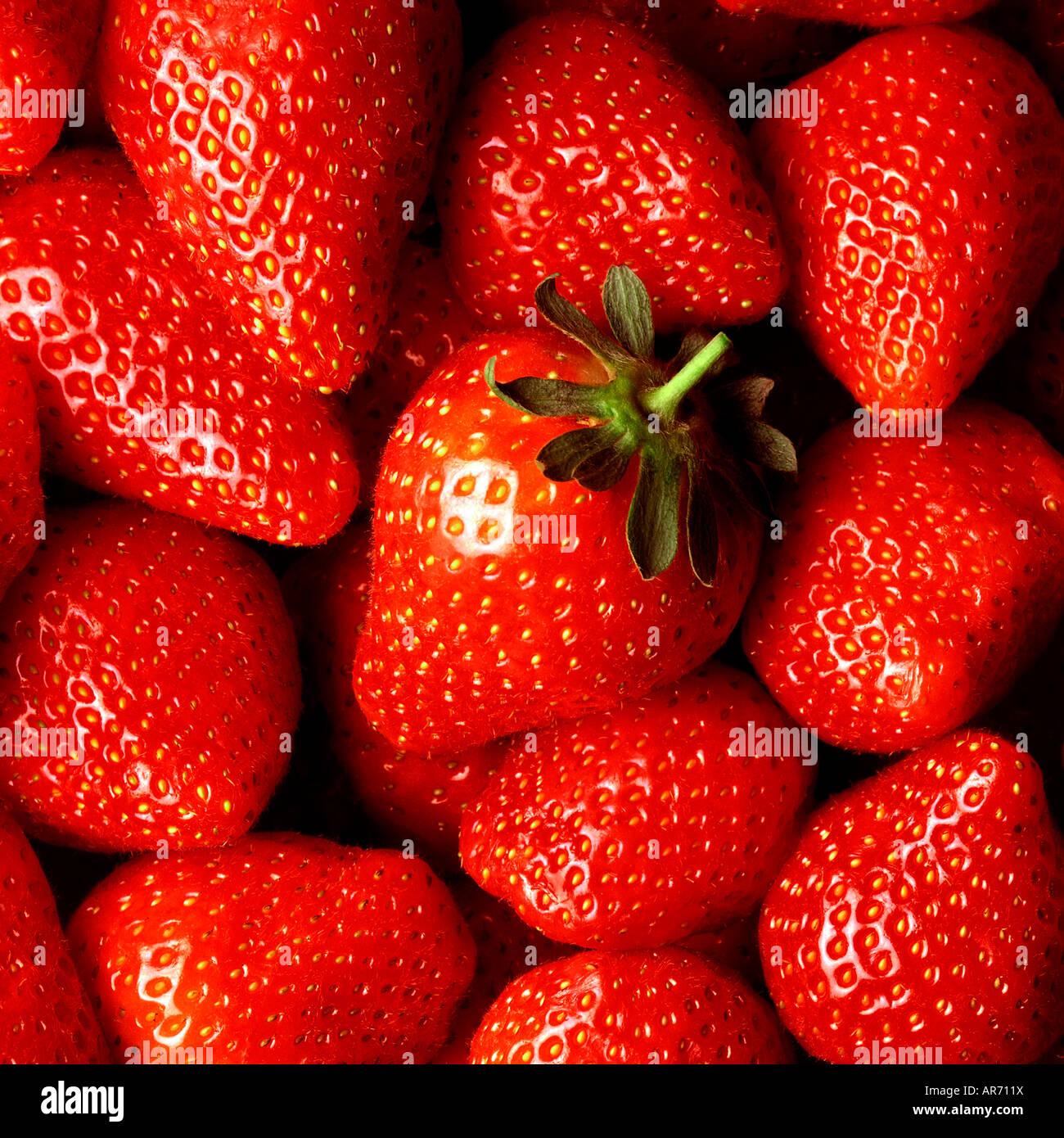 frische erdbeeren schliessen sich mit einer 39 helden 39 erdbeere in der mitte der aufnahme. Black Bedroom Furniture Sets. Home Design Ideas