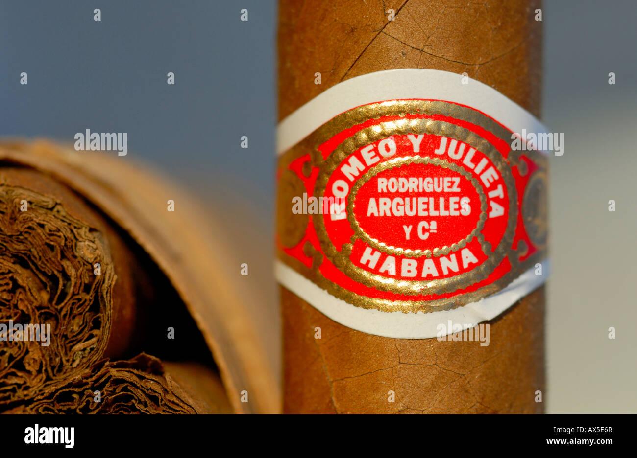 Zigarre Detail, Romeo y Julia Marke, Havanna, Kuba Stockbild