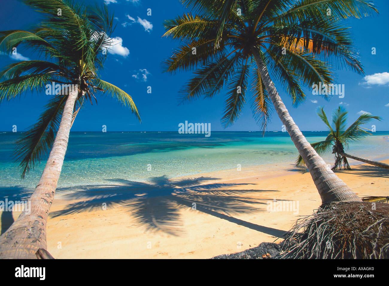 Strang, Dominikanische Republik Karibik Stockbild