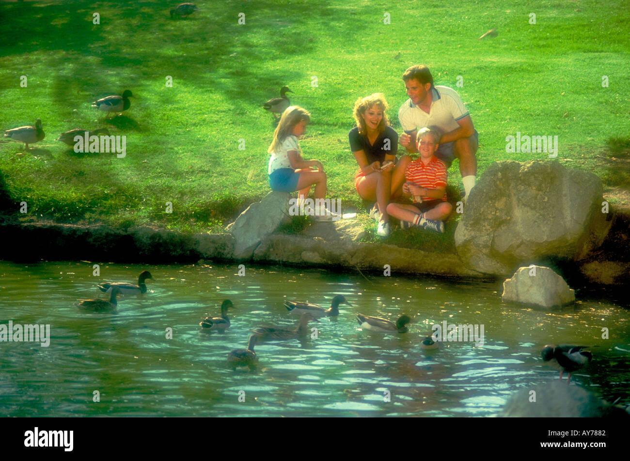 Familie Picknick Erwachsene 30 Kinder Feeding Ducks Vögel lifestyle Wasser, See Stockbild