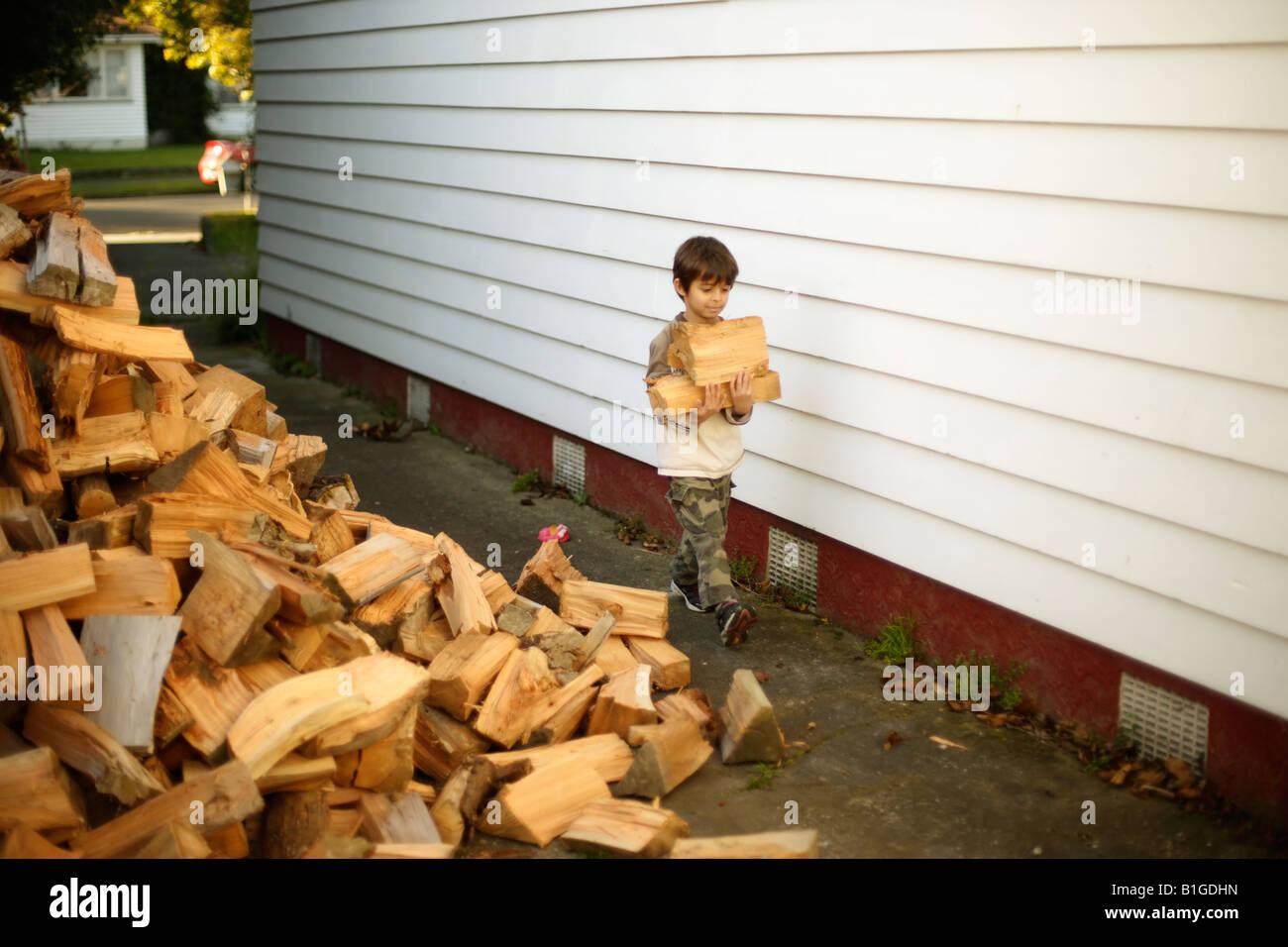 Sechs Jahre alter Junge bringt Protokolle aus den Holzhaufen Stockbild