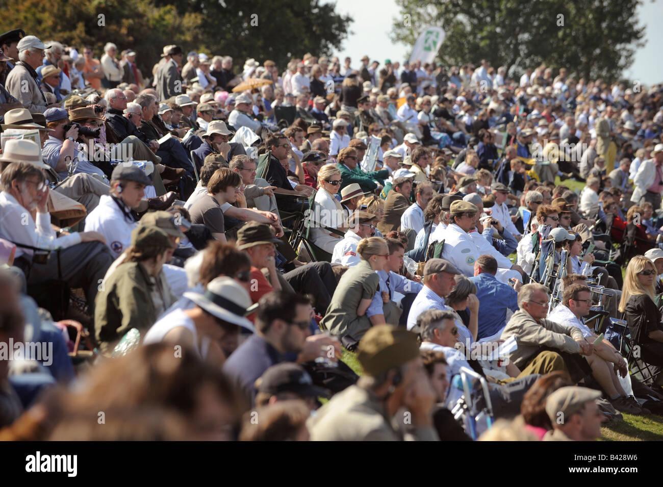 Goodwood Revival 2008: Massen packen die historischen Motorkreis in Sussex. Bild von Jim Holden. Stockbild